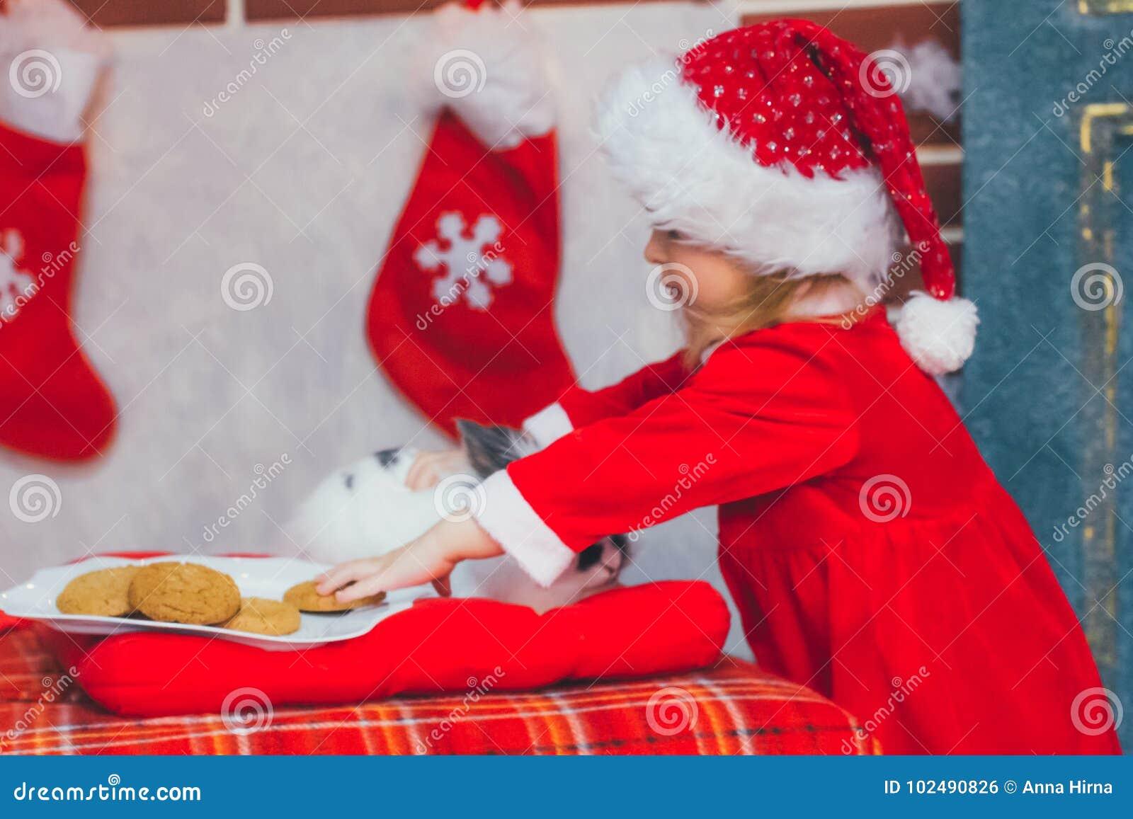 Χαριτωμένο μικρό κορίτσι στο καπέλο Santa με το πιάτο των εύγευστων μπισκότων στο σπίτι