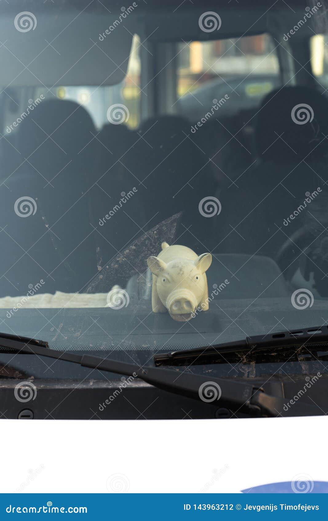 Χαριτωμένο παχύ παιχνίδι χοίρων πίσω από το παράθυρο ανεμοφρακτών ενός αυτοκινήτου