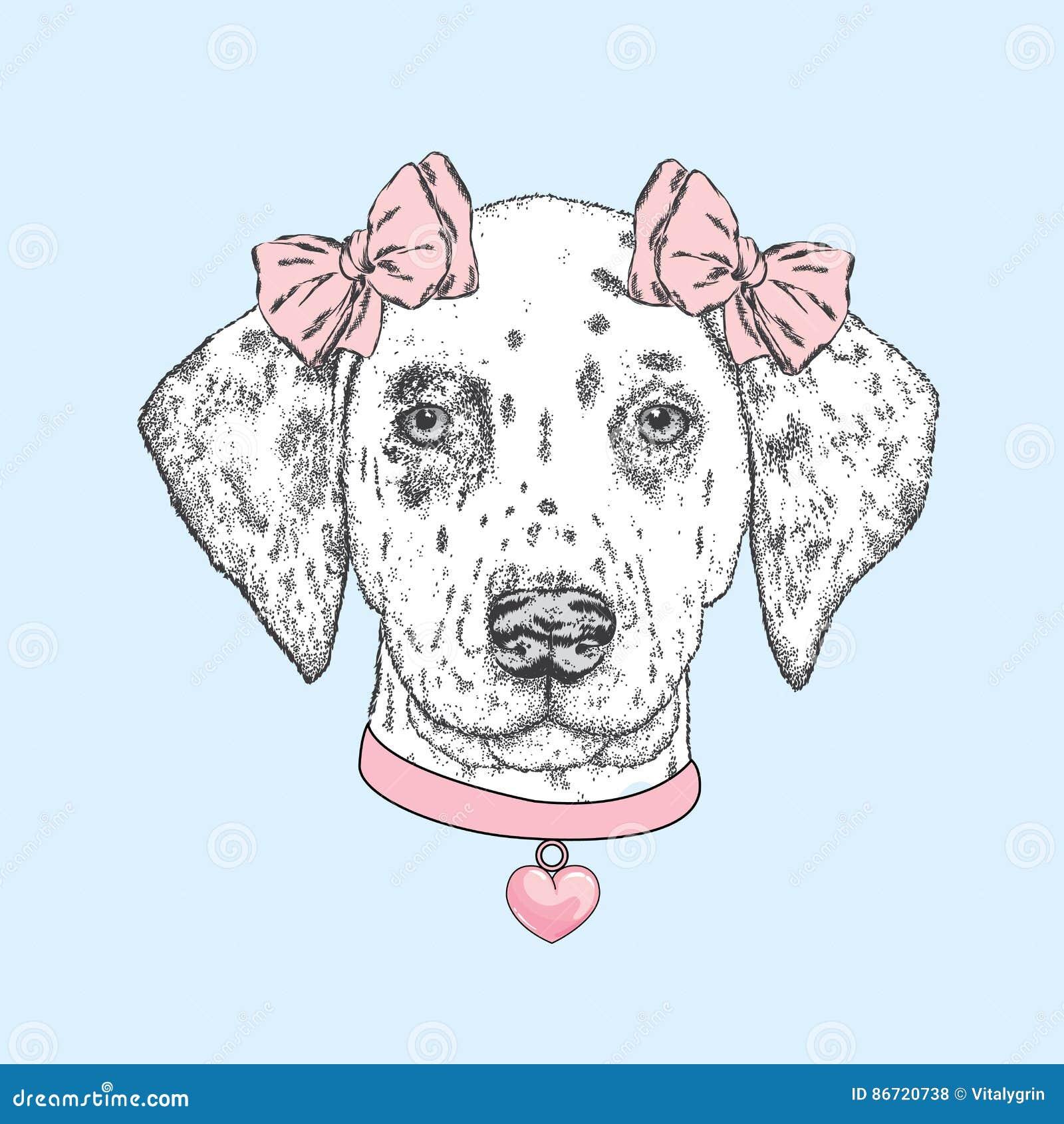 Χαριτωμένο σκυλί που φορά ένα περιλαίμιο με καρδιά και δύο τόξα Όμορφο από τη Δαλματία χρωμάτισε με το χέρι Διανυσματική απεικόνι