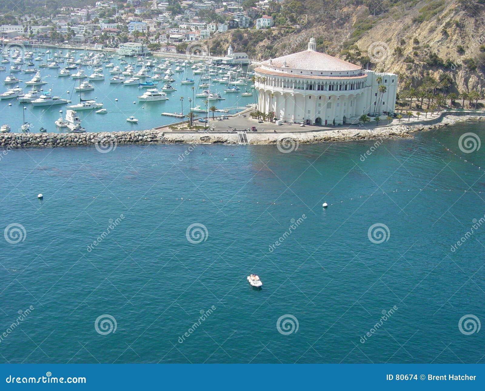 χαρτοπαικτική λέσχη Catalina