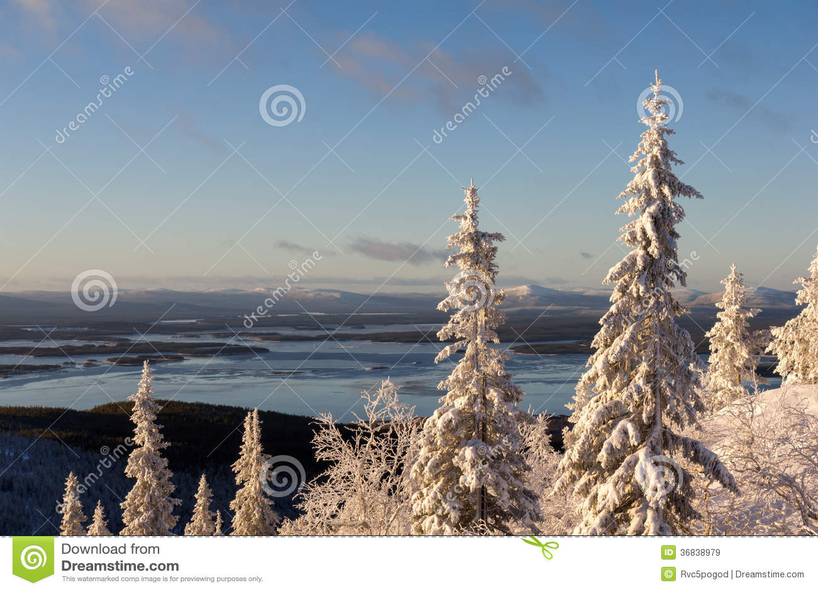 Χειμερινό δασικό τοπίο, χερσόνησος κόλα, Ρωσία