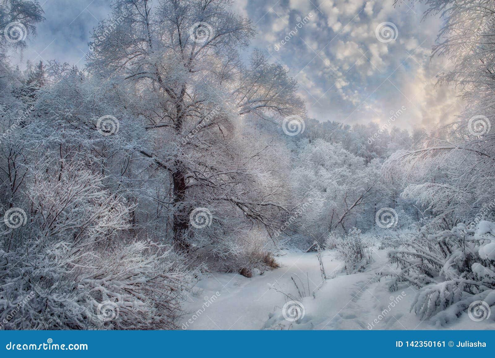Χειμερινό χιονώδες τοπίο στην ηλιόλουστη ημέρα
