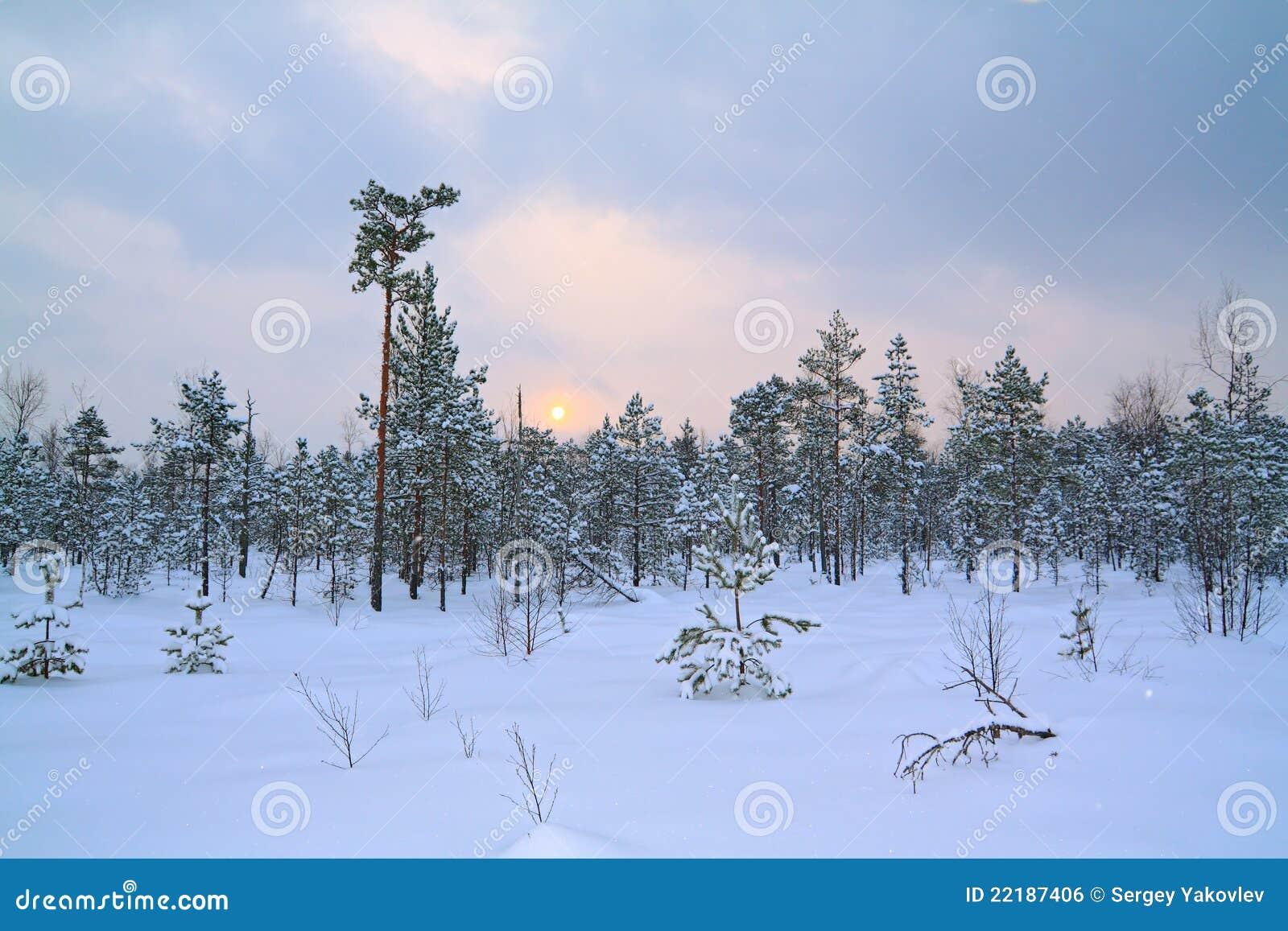 χειμώνας έλους