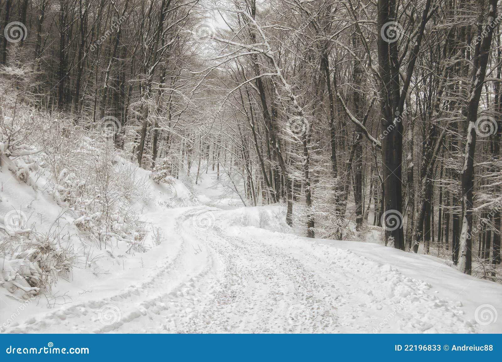 χειμώνας δασικών δρόμων