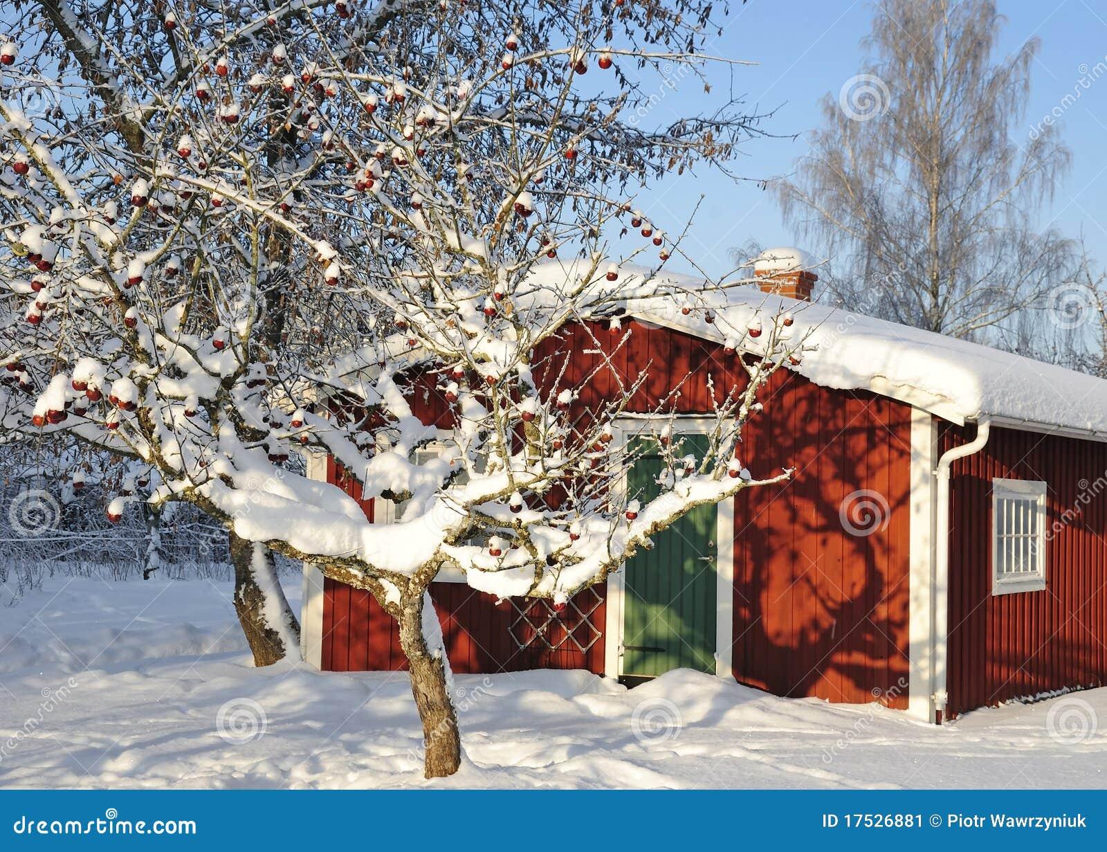 χειμώνας κήπων s αξόνων