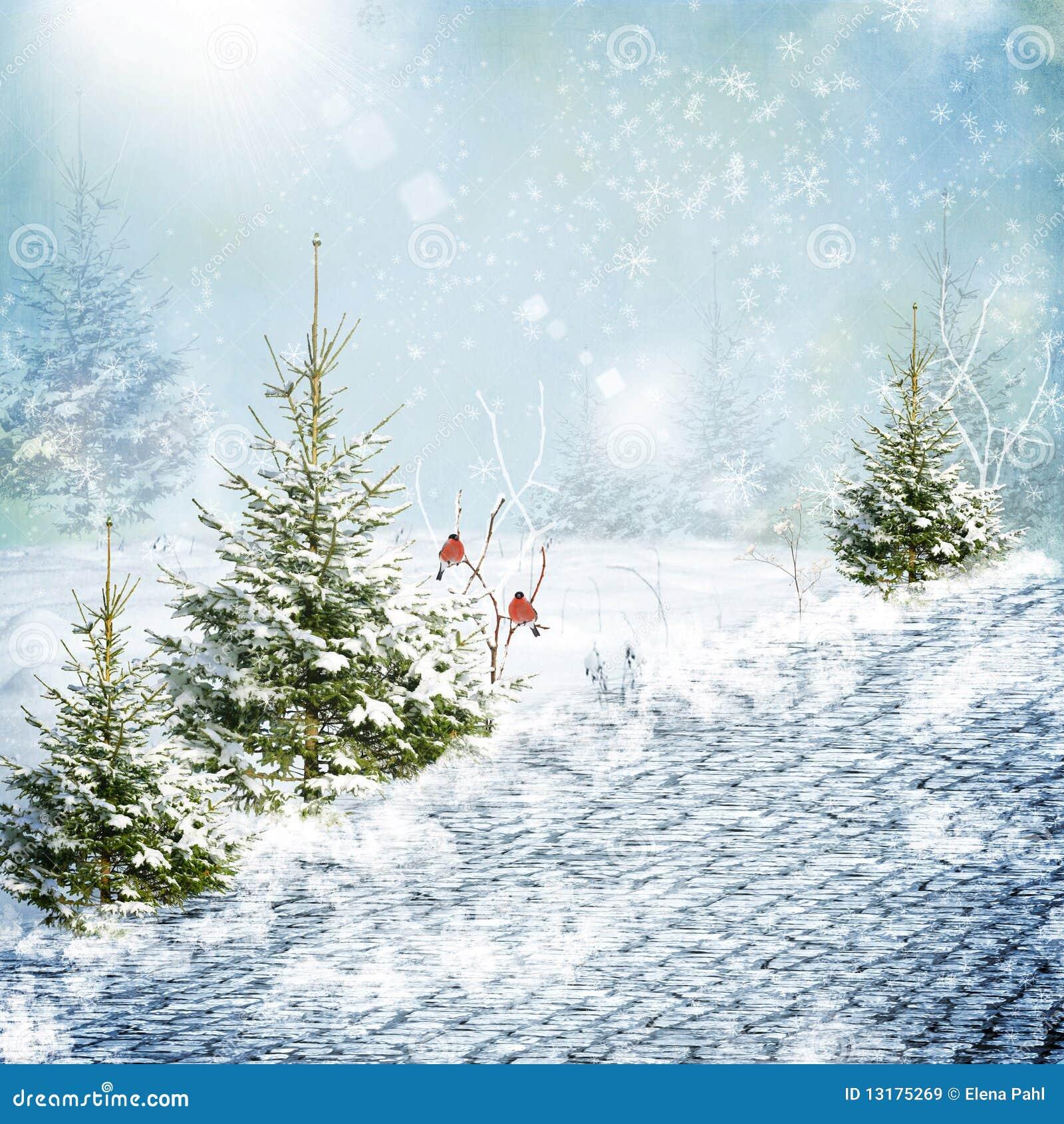 χειμώνας οδικού χιονιού