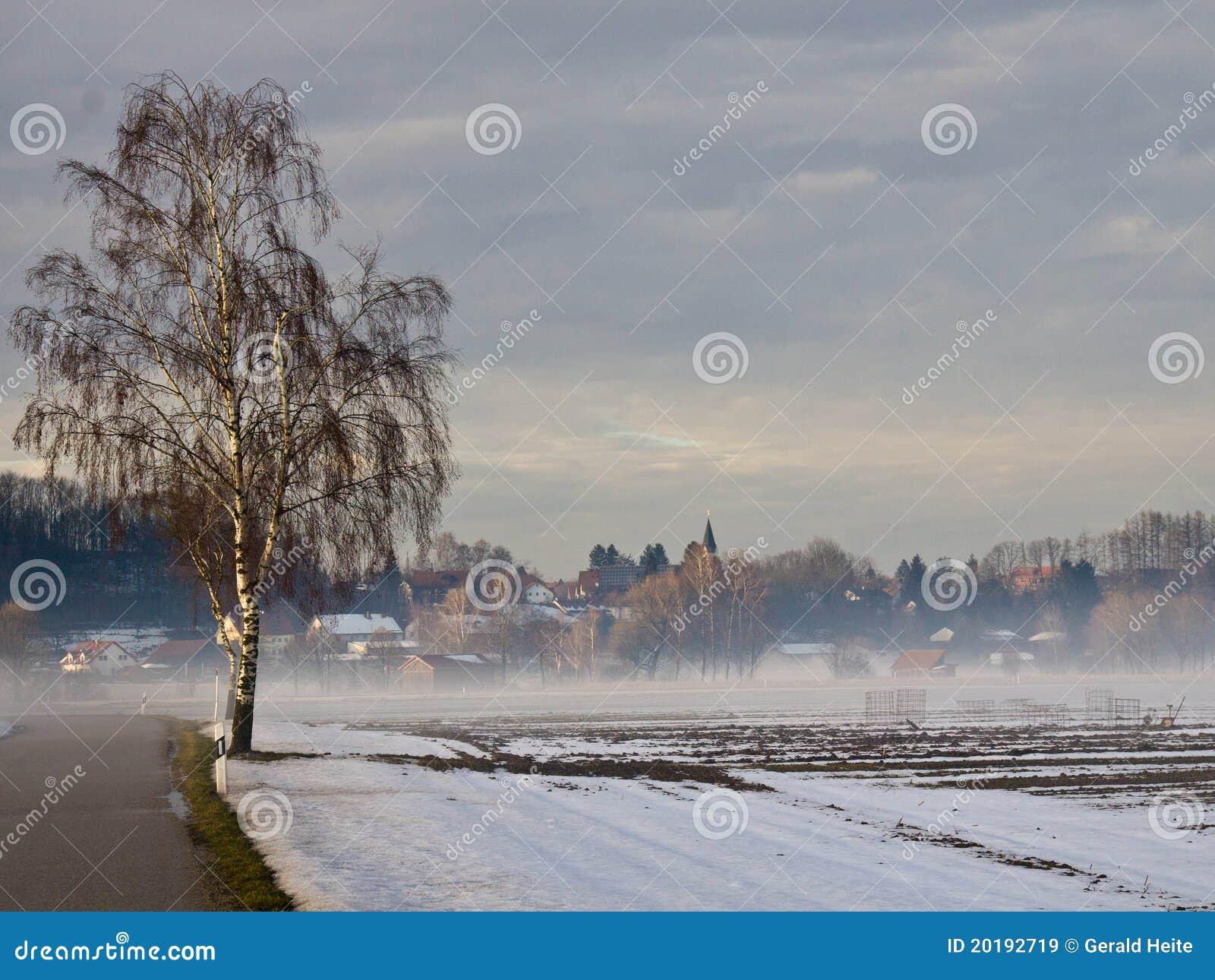 χειμώνας σημύδων