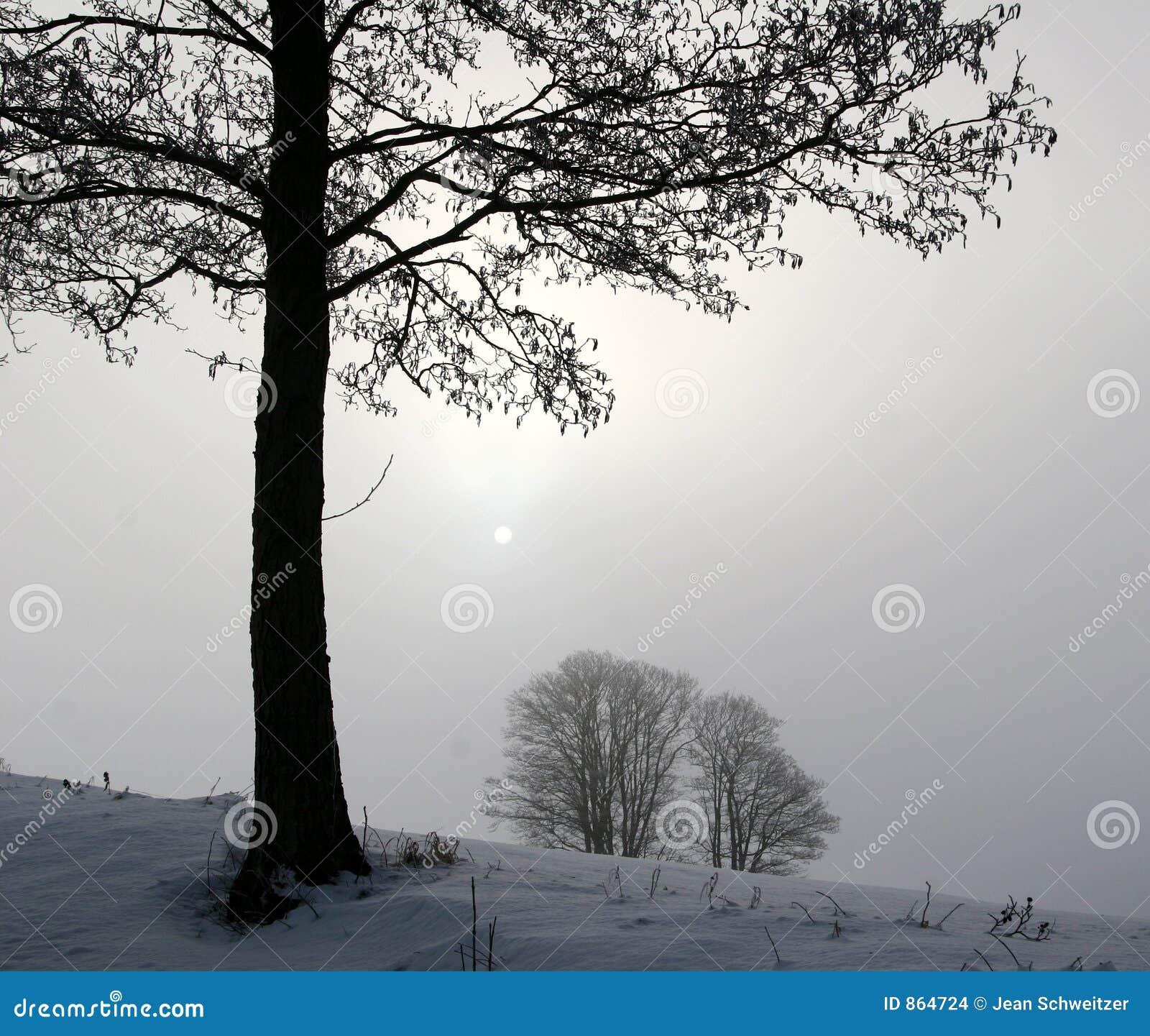 χειμώνας της Δανίας