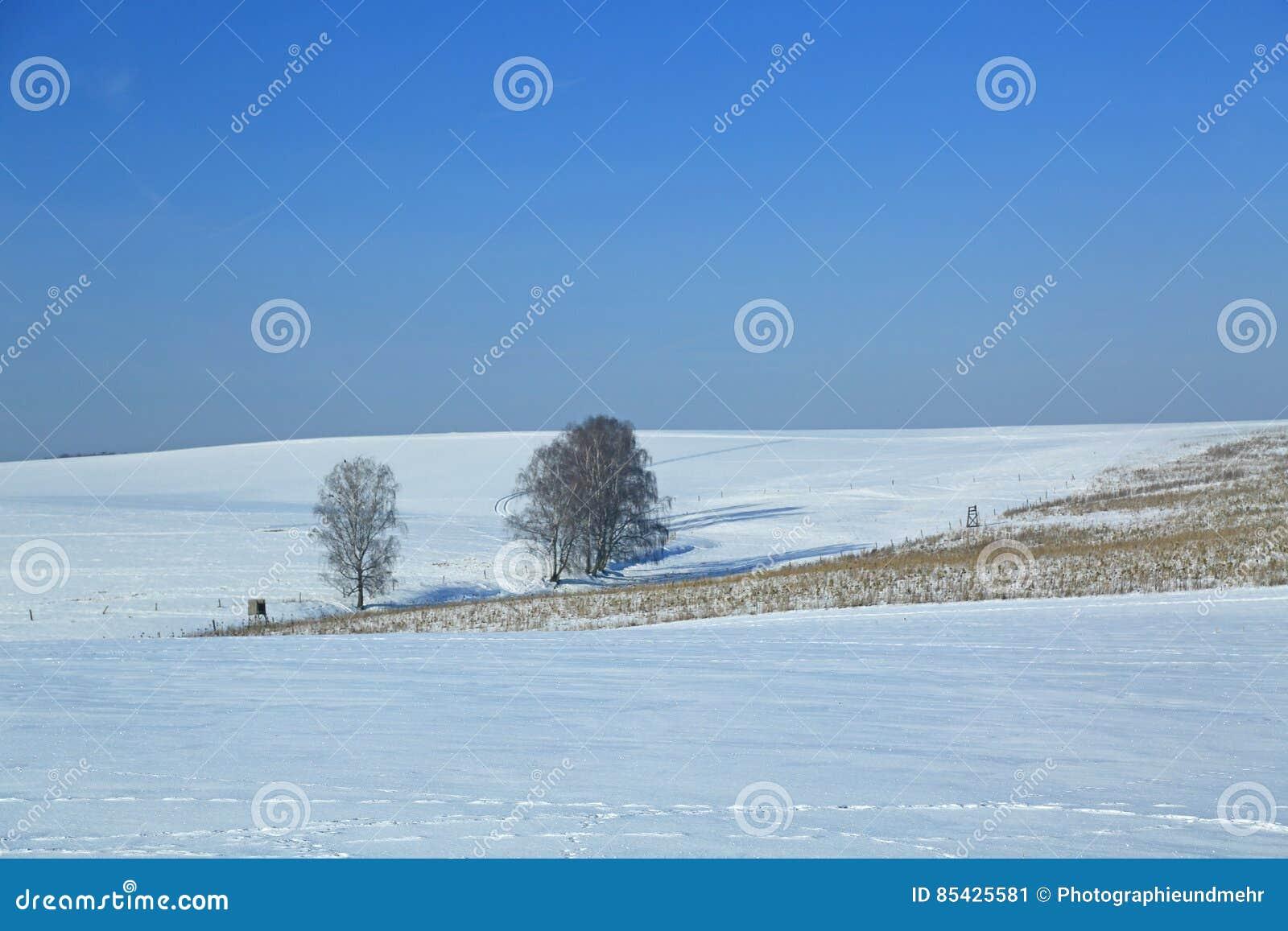 χειμώνας τοπίων της Γερμα&nu