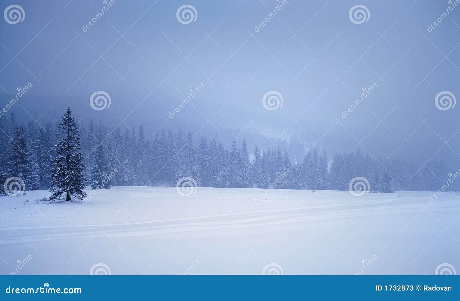 χειμώνας τοπίων