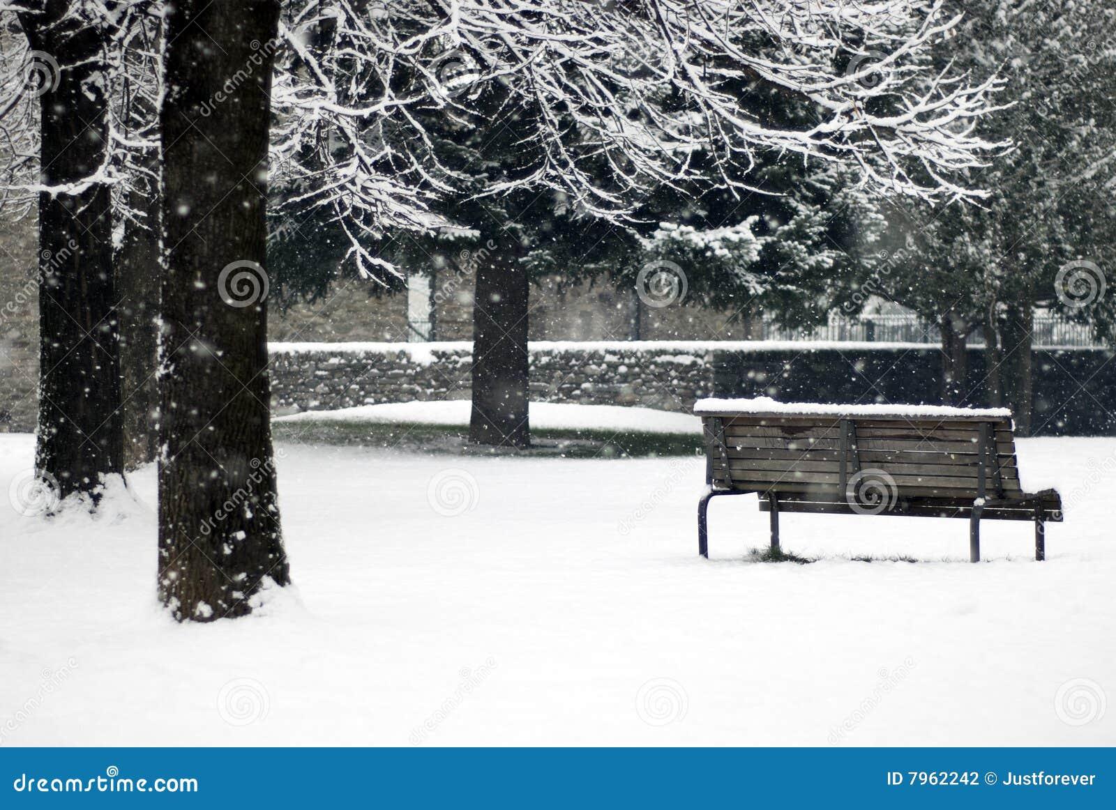 χειμώνας χιονοπτώσεων σκ
