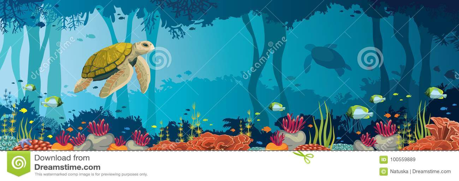 Χελώνα, κοραλλιογενής ύφαλος, υποβρύχια σπηλιά και σπηλιά Υποβρύχια θάλασσα