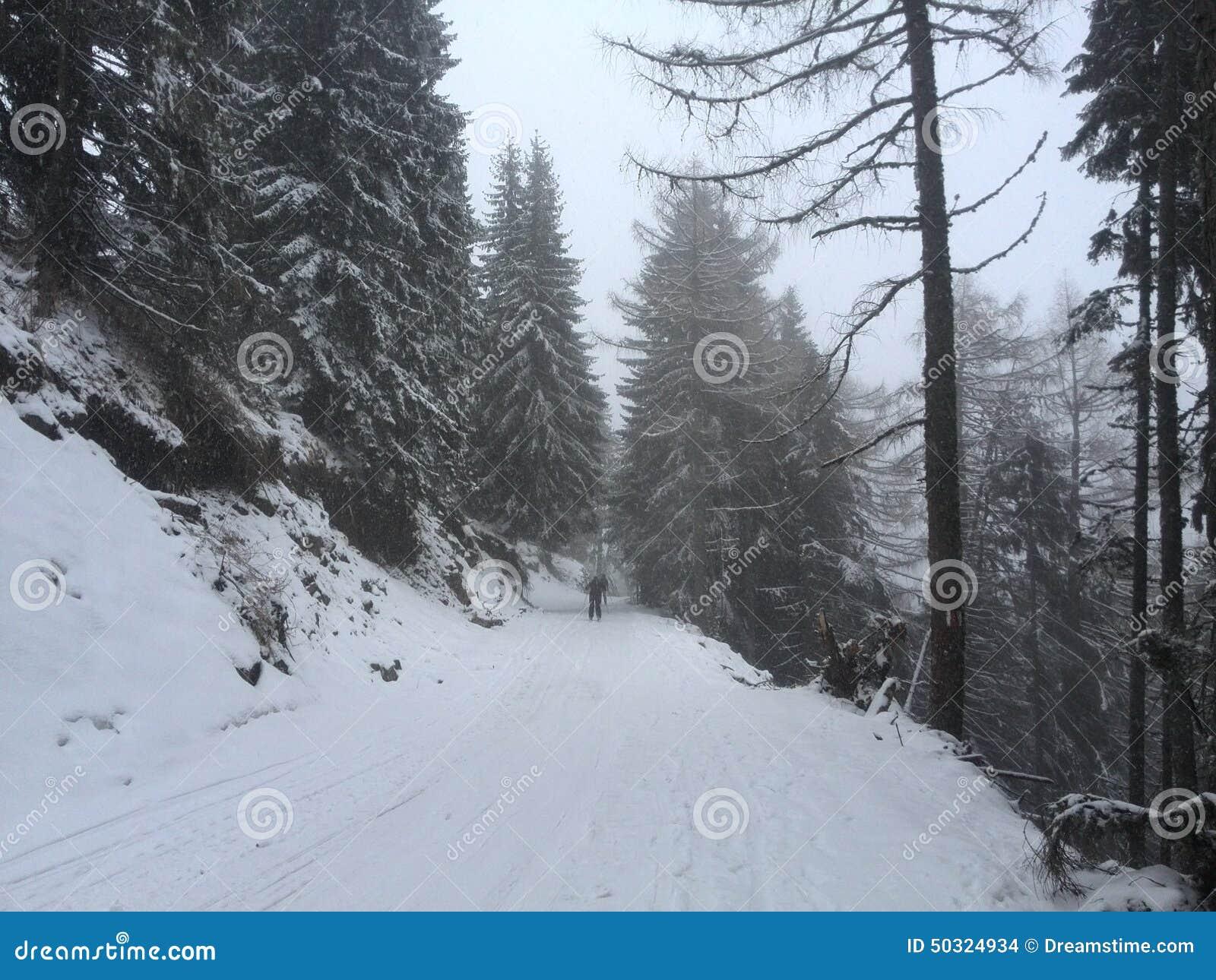 Χιονώδες Sinaia