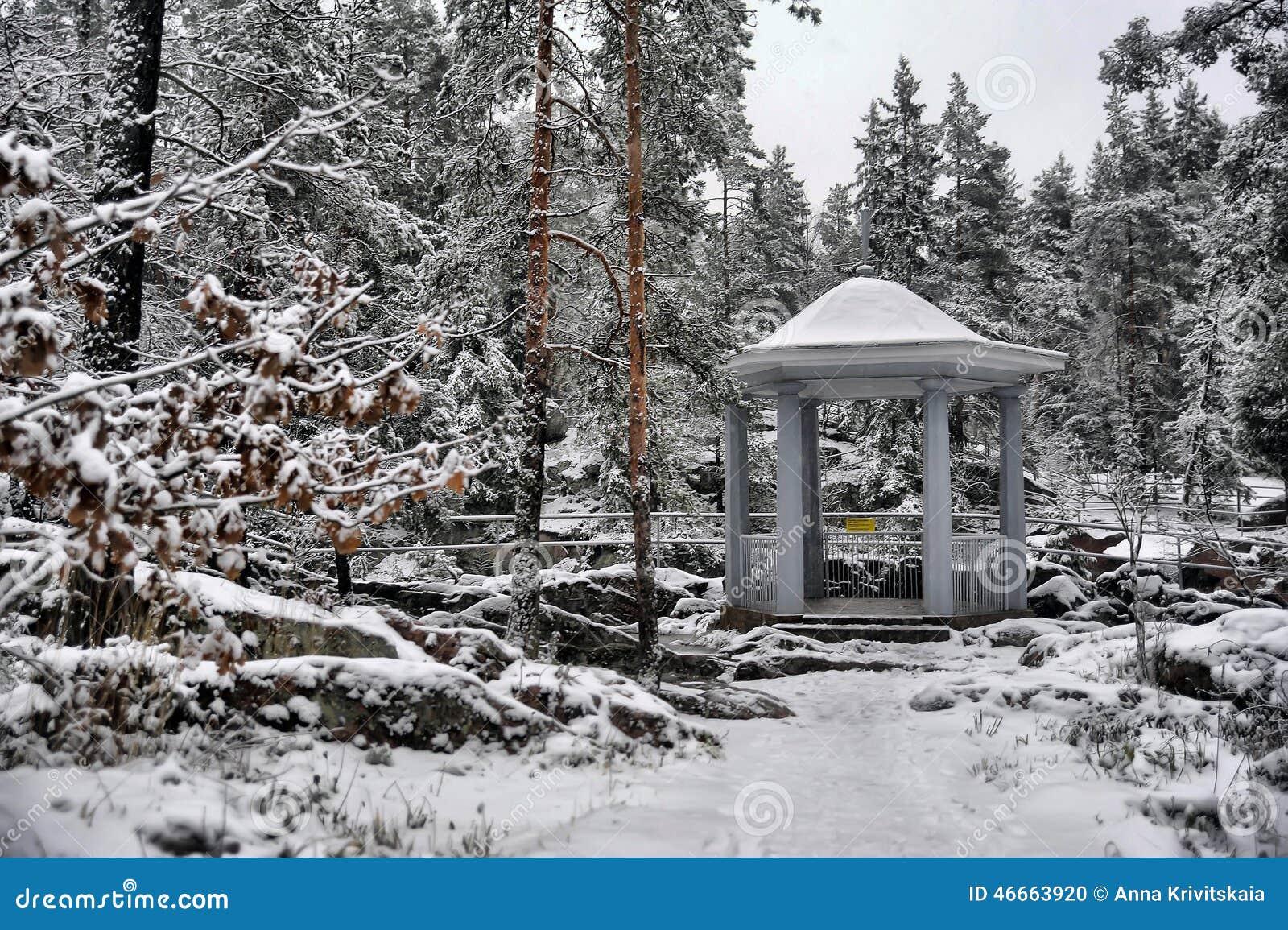 χιονώδης χειμώνας δέντρων πάρκων φύσης Ιανουαρίου παγετού ημέρας