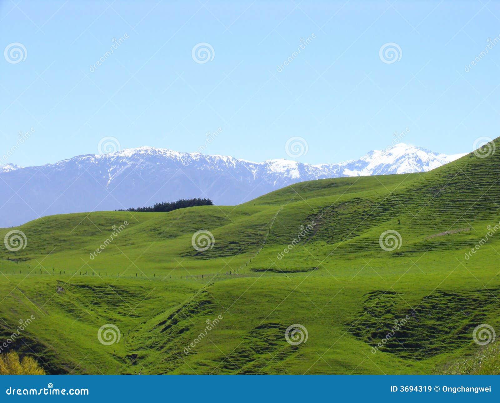 χιόνι βουνών λιβαδιών