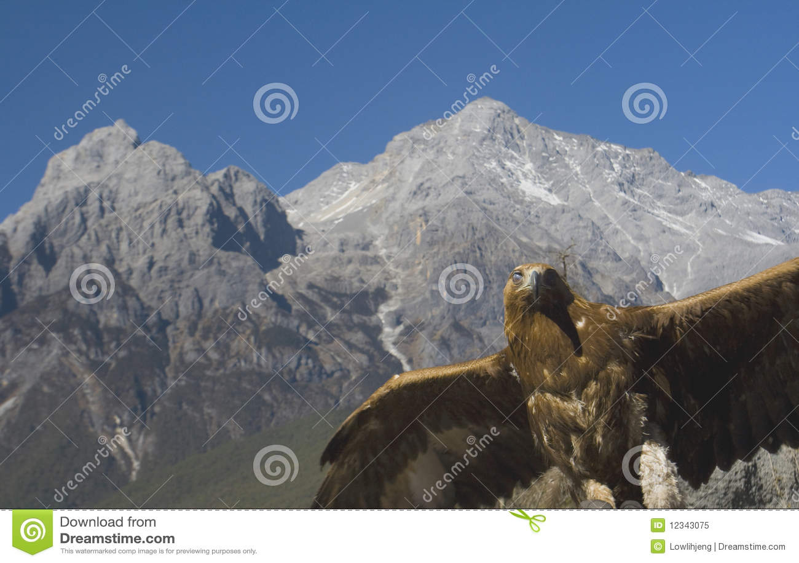 χιόνι βουνών νεφριτών αετών &delta