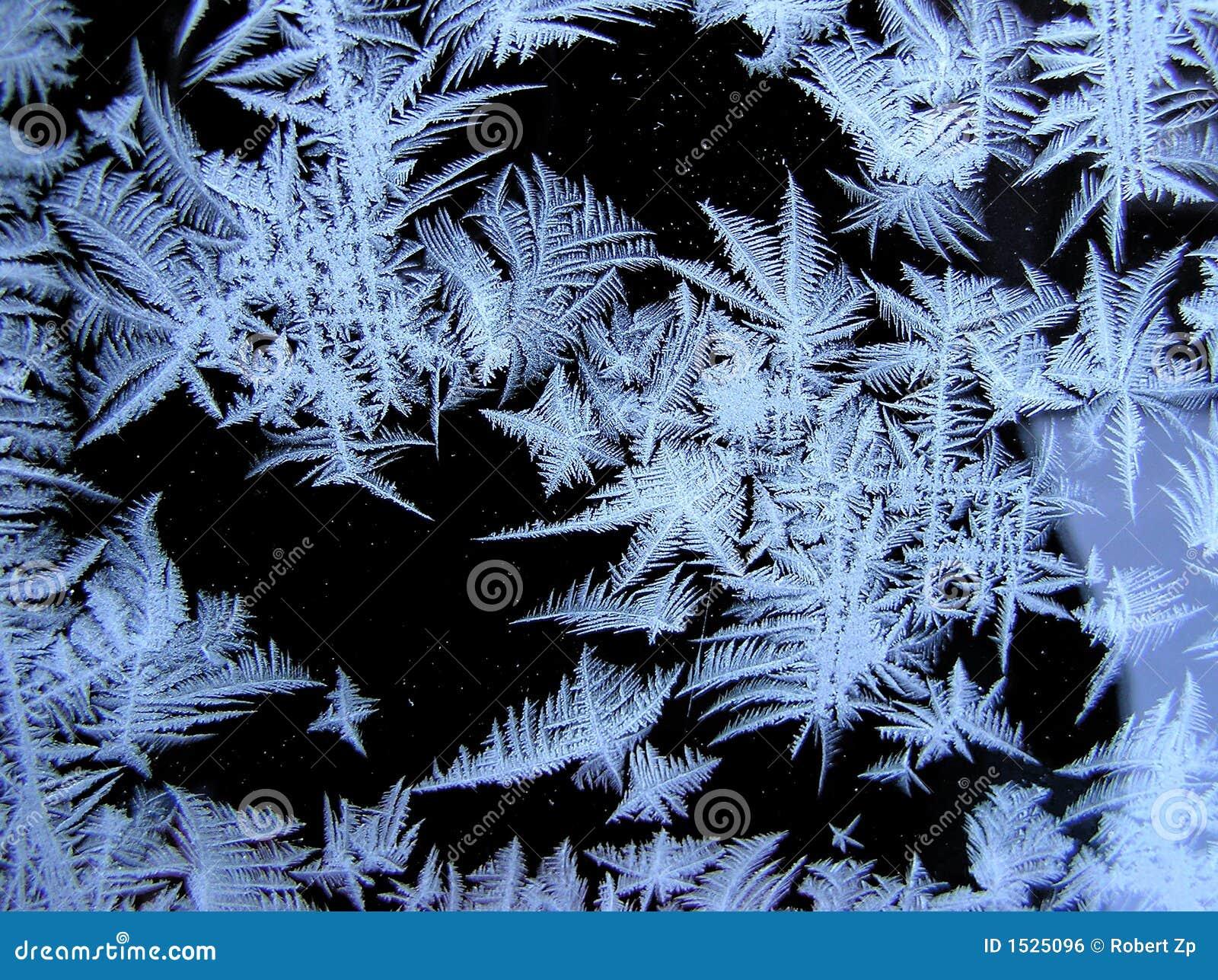 χιόνι λουλουδιών