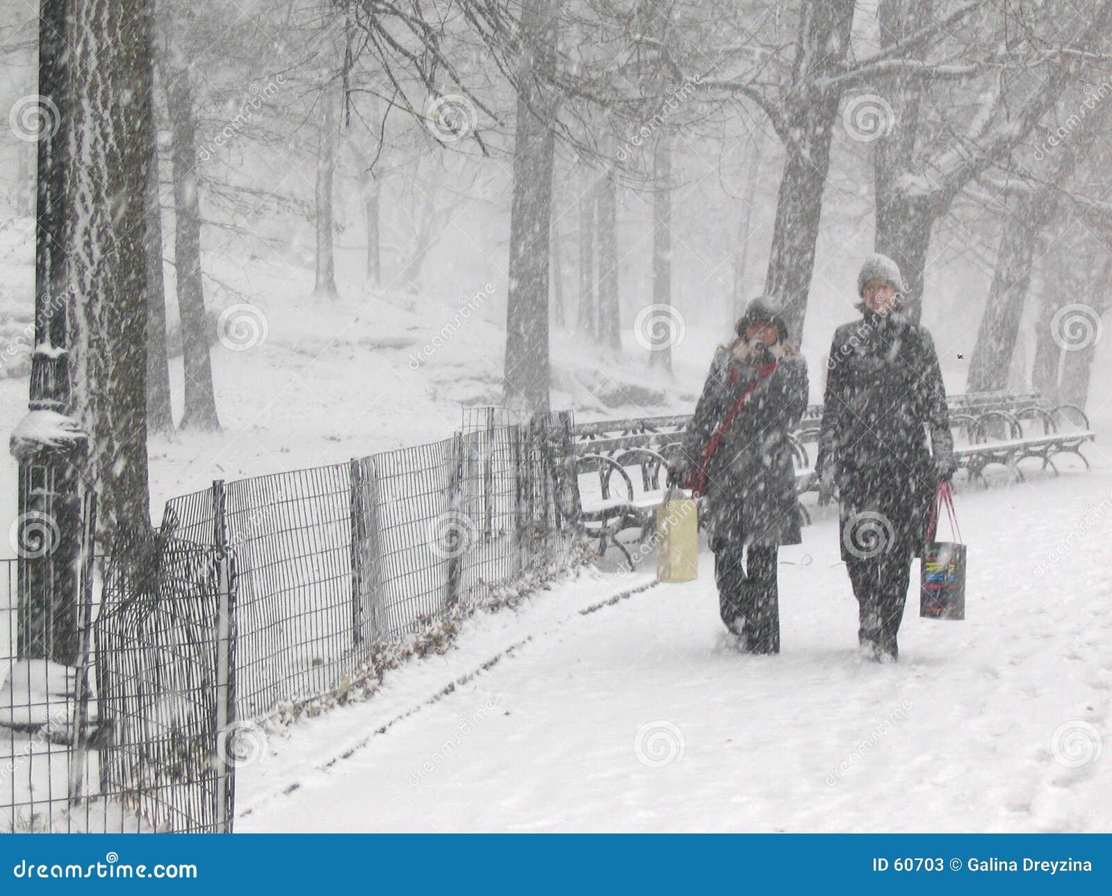 χιόνι πάρκων