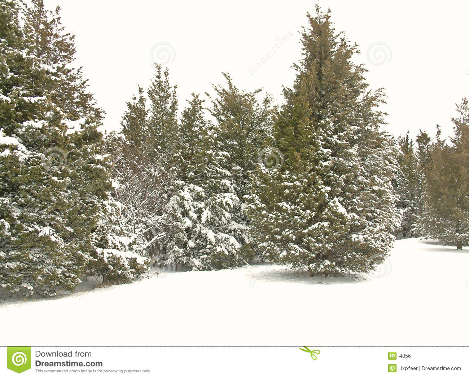 χιόνι 2 πάρκων