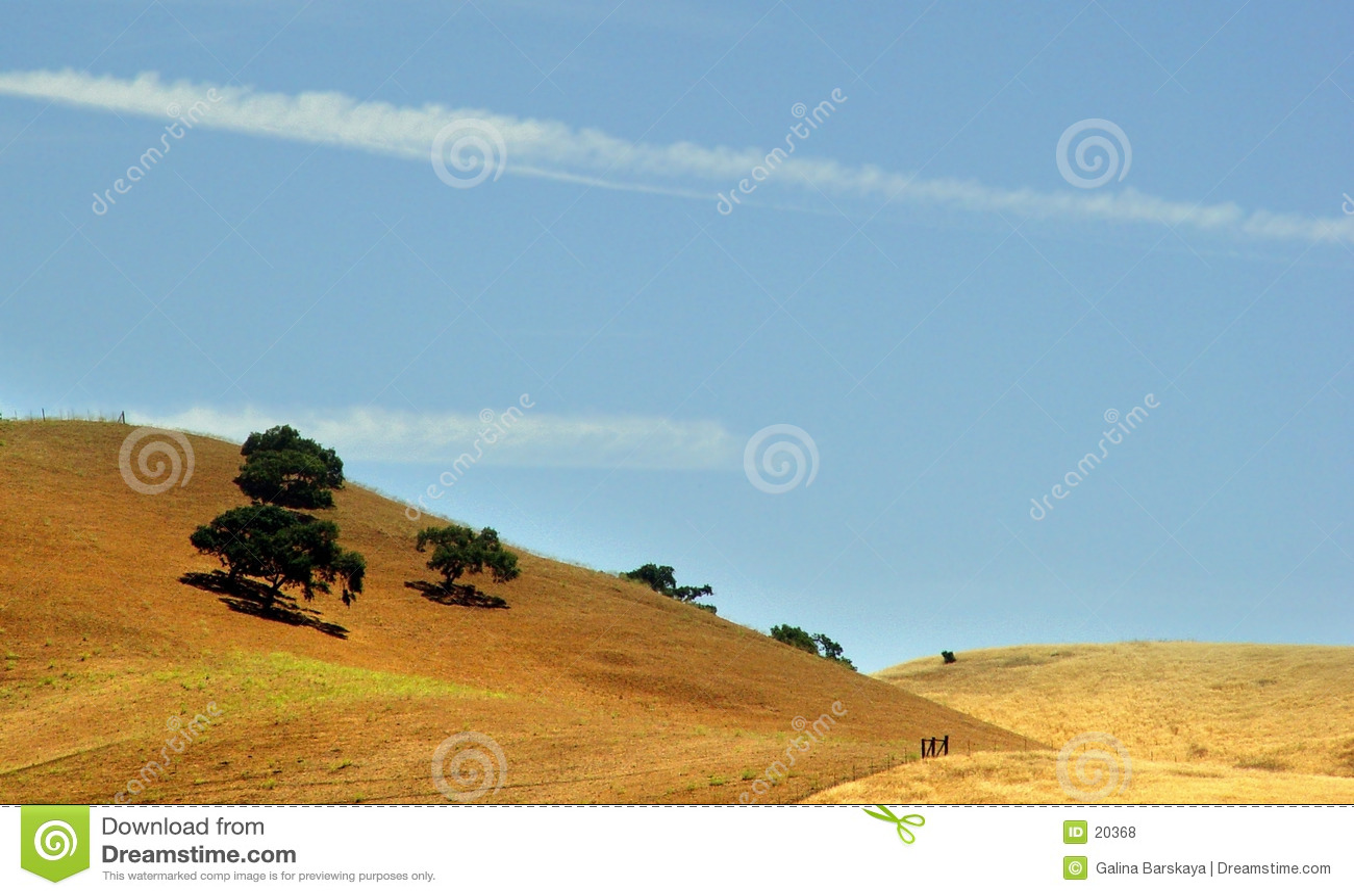 χρυσοί λόφοι