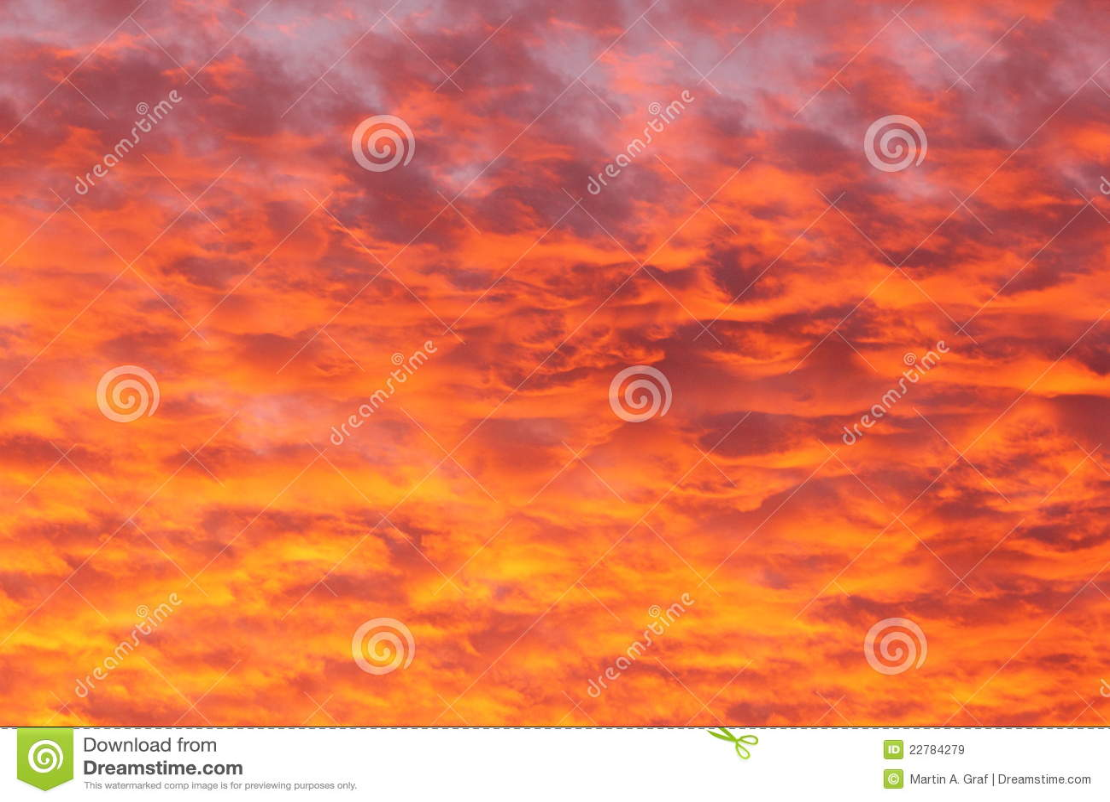 Download χρυσό ηλιοβασίλεμα στοκ εικόνα. εικόνα από χνουδωτός - 22784279