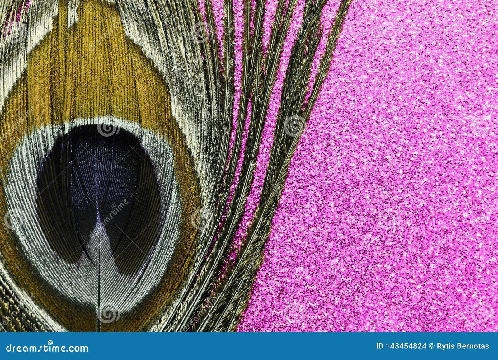 Χρυσό φτερό peacock στο λαμπρό υπόβαθρο μεταλλικού θόρυβου
