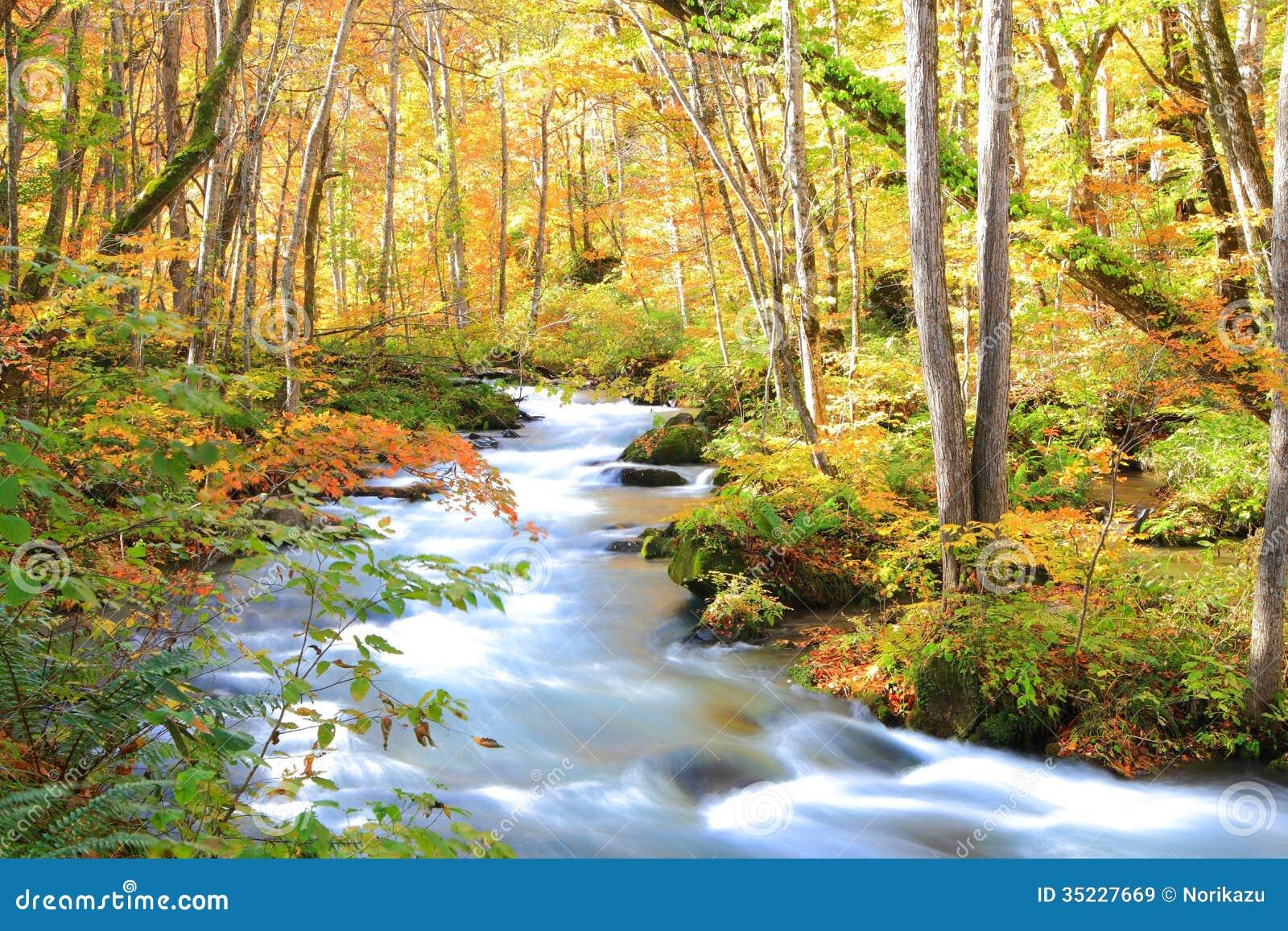 Χρώματα φθινοπώρου του ρεύματος Oirase