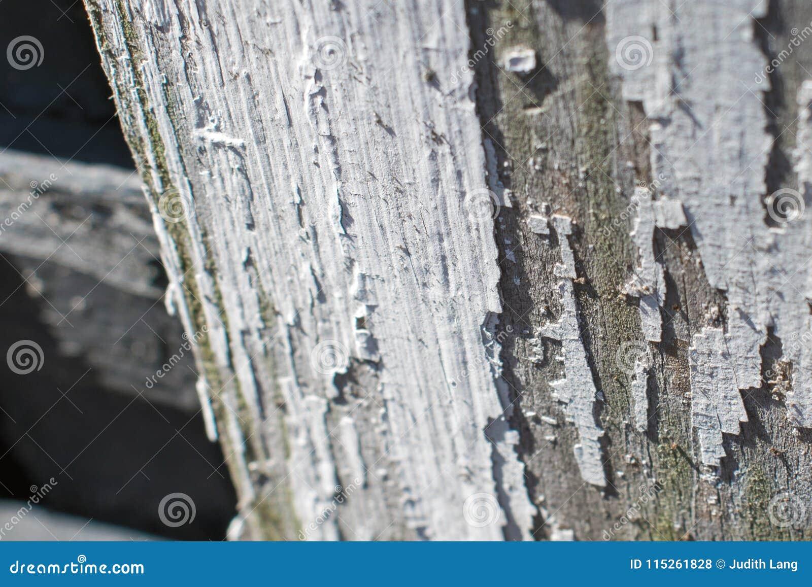 Χρώμα αποφλοίωσης στο παλαιό ξύλο