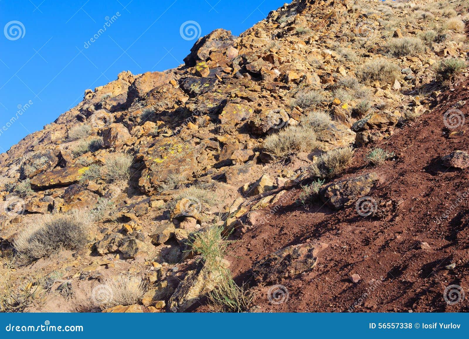 Download Χώμα χρώματος των καταθέσεων υδραργύρου σε Altai Στοκ Εικόνες - εικόνα από άργιλος, διαποτισμένος: 56557338