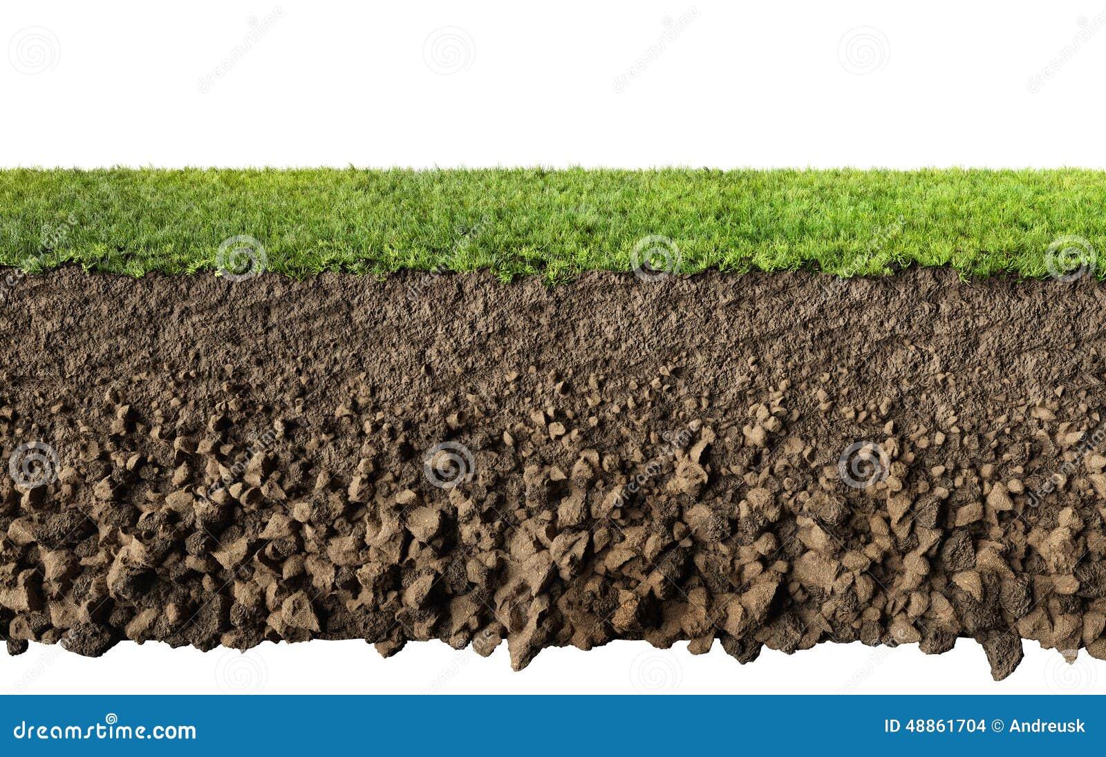 χώμα χλόης
