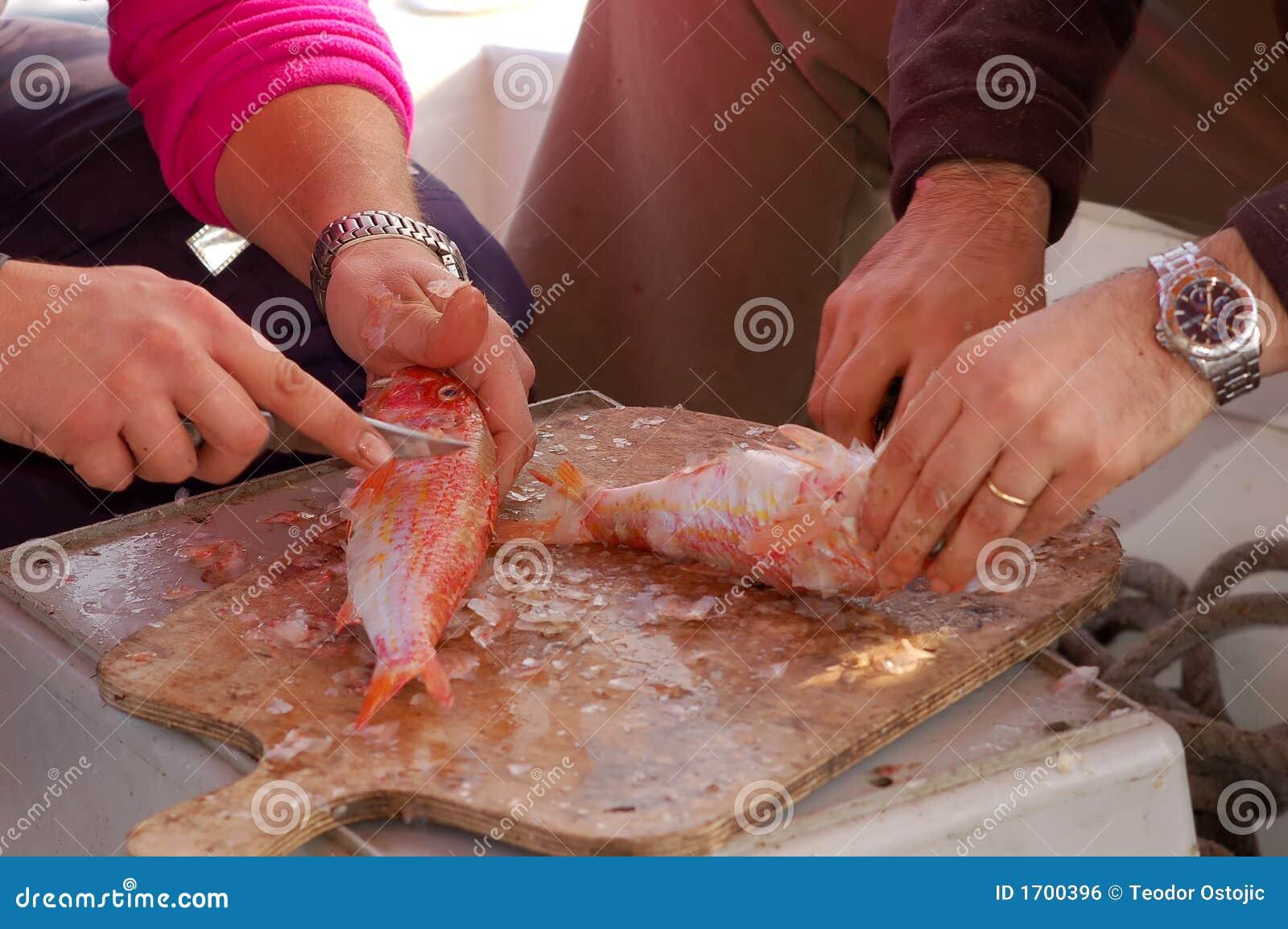 ψάρια καθαρισμού που αλιεύουν τη φρέσκια σειρά