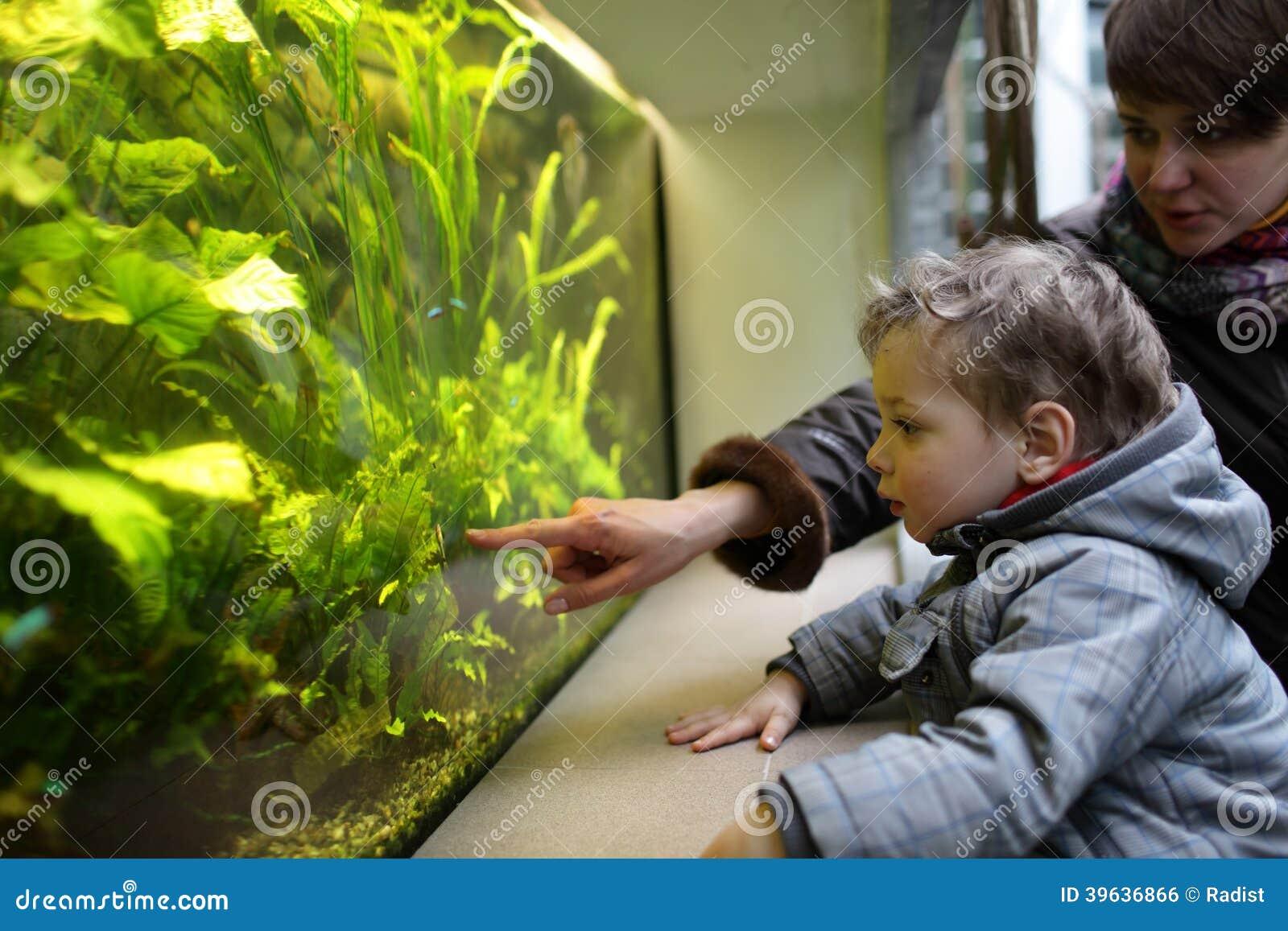 Ψάρια οικογενειακής προσοχής