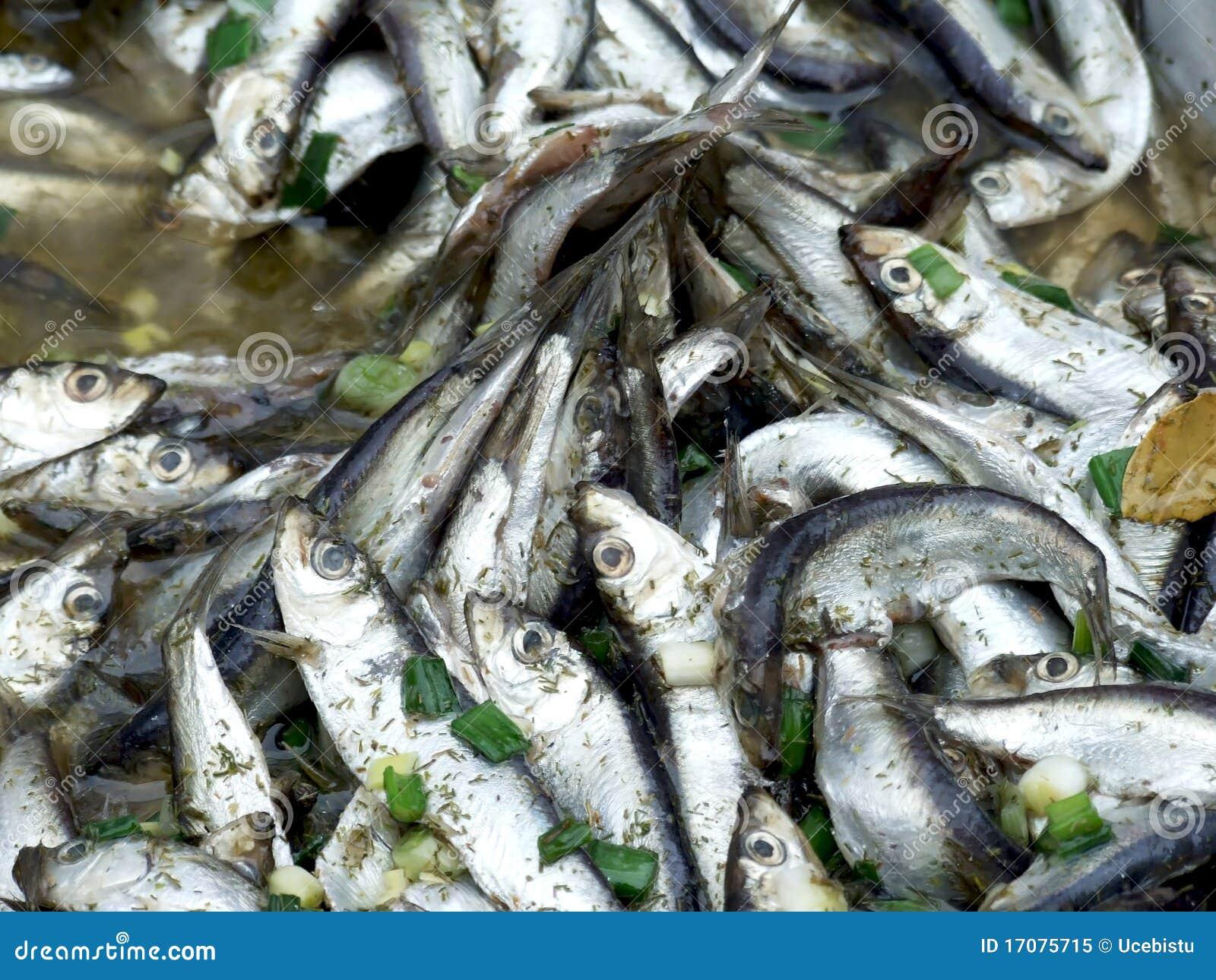 ψάρια που μαρινάρονται