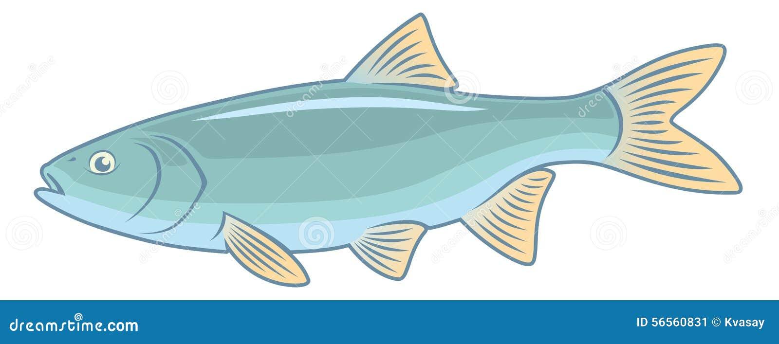 Ψάρια IDE