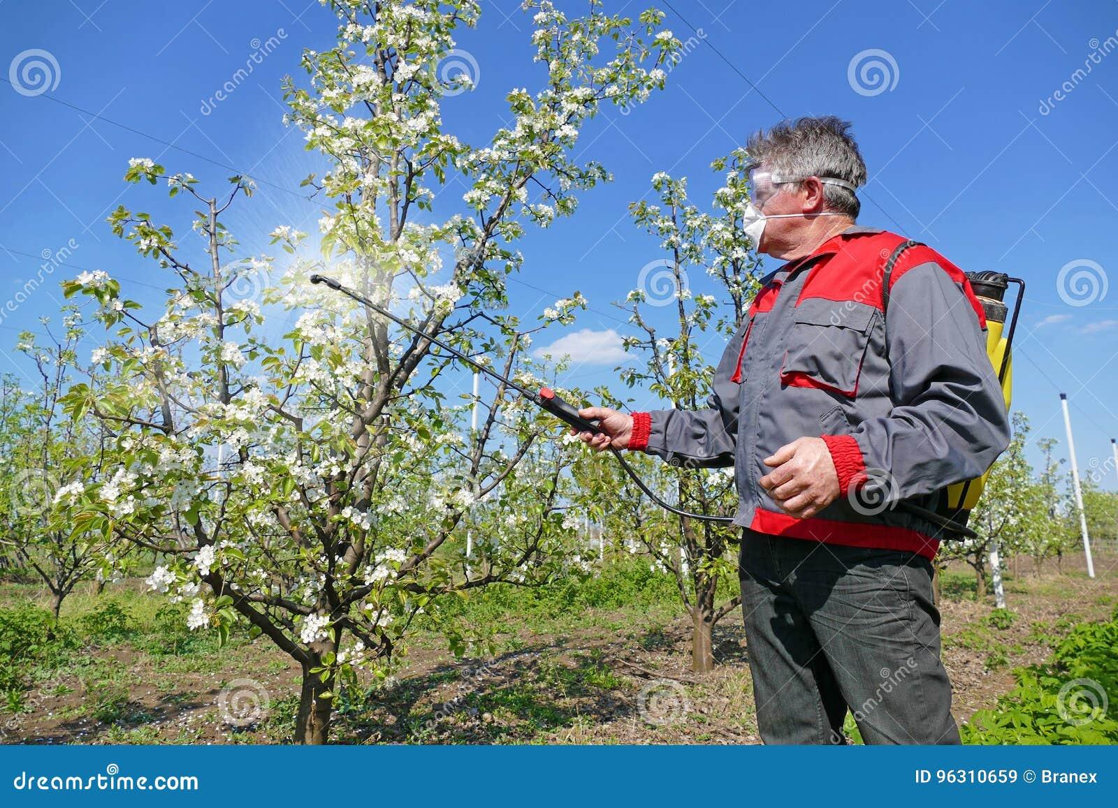 Ψεκάζοντας φυτοφάρμακο