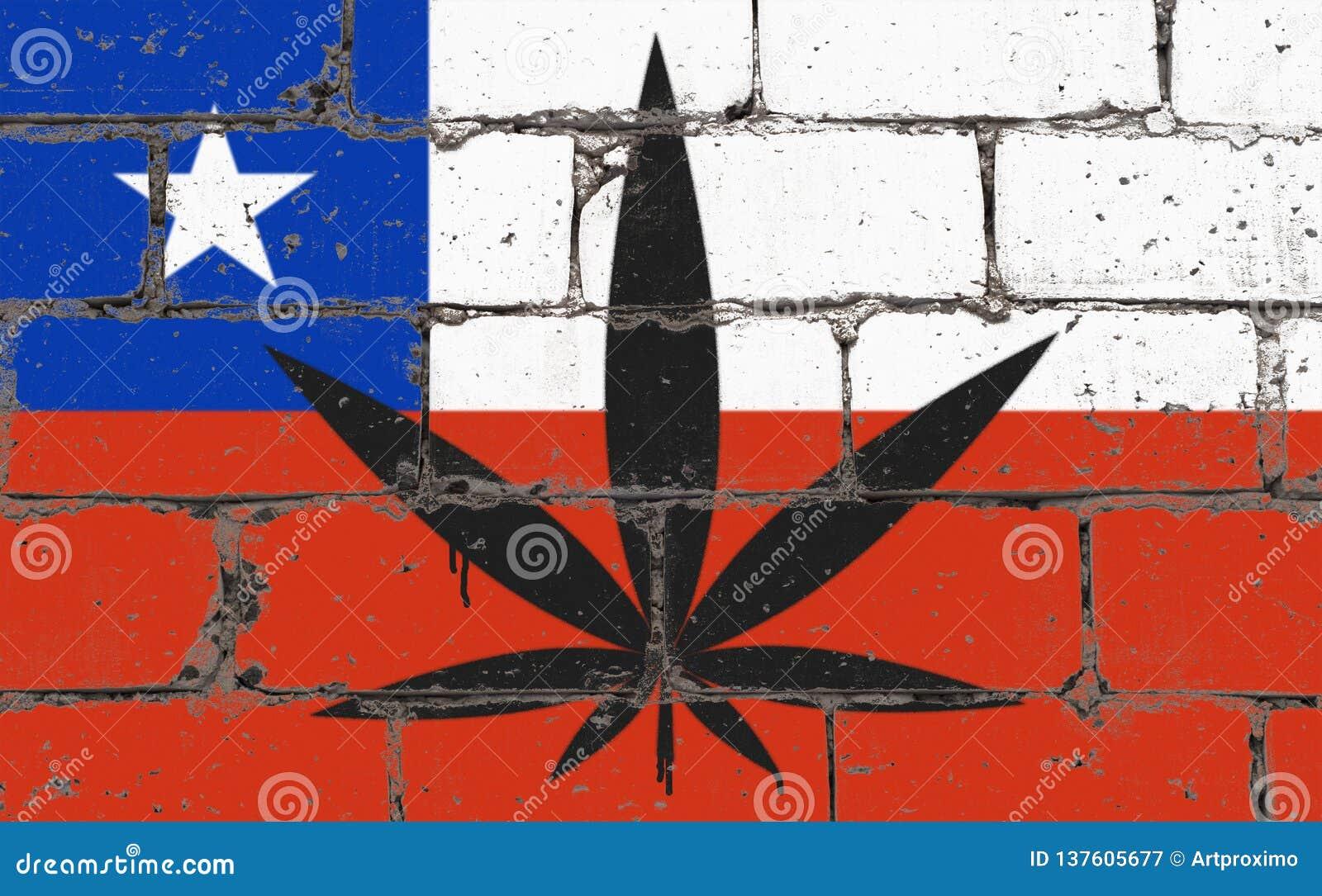 Ψεκασμός τέχνης οδών γκράφιτι που επισύρει την προσοχή στο διάτρητο Φύλλο καννάβεων στο τουβλότοιχο με τη σημαία Χιλή