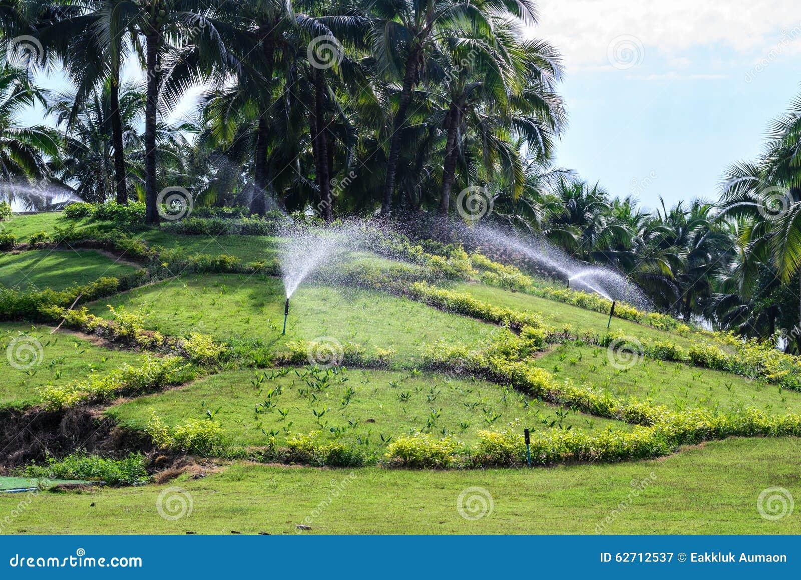 Ψεκαστήρας νερού χορτοταπήτων κήπων