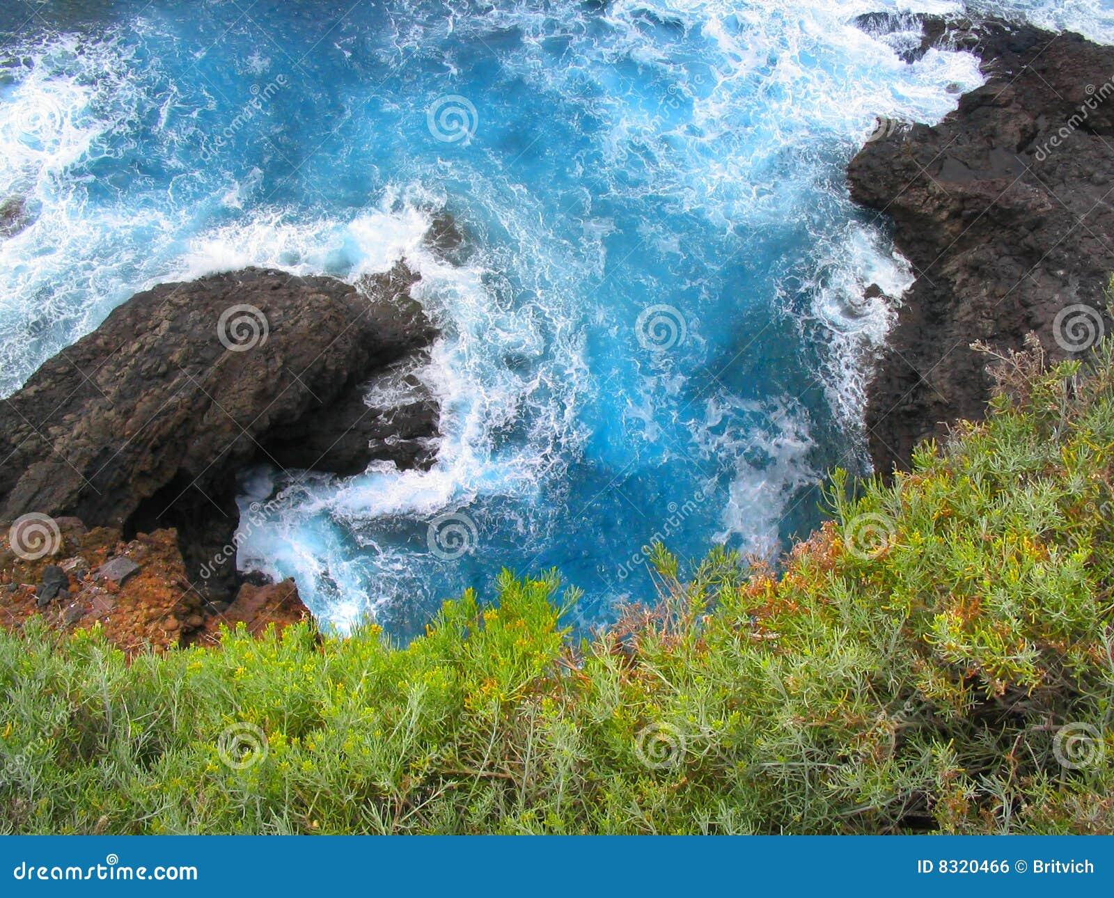 ωκεάνια όψη καναρινιών