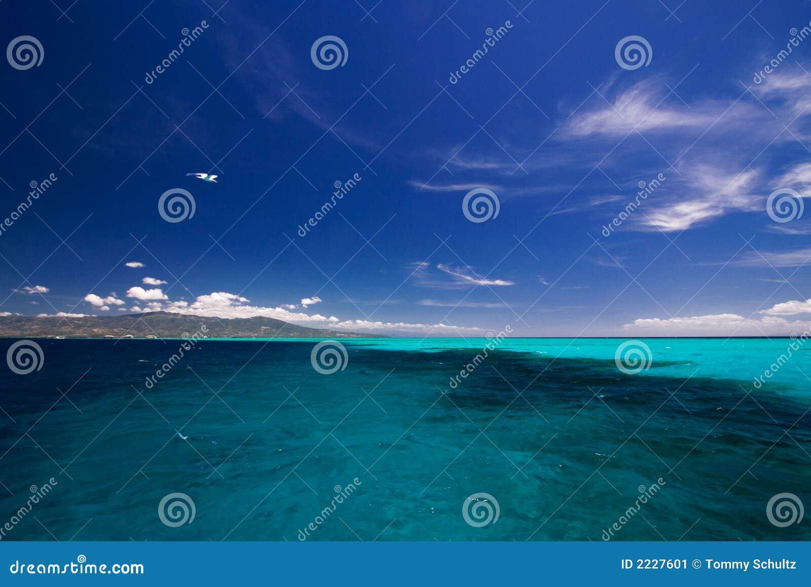 ωκεάνια όψη
