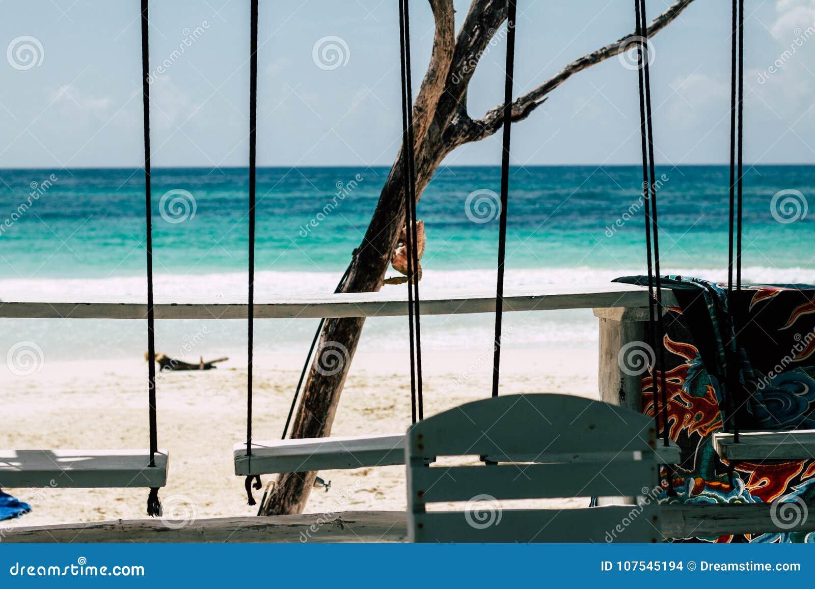 Ωκεάνιο ξενοδοχείο κοκοφοινίκων άποψης Tulum