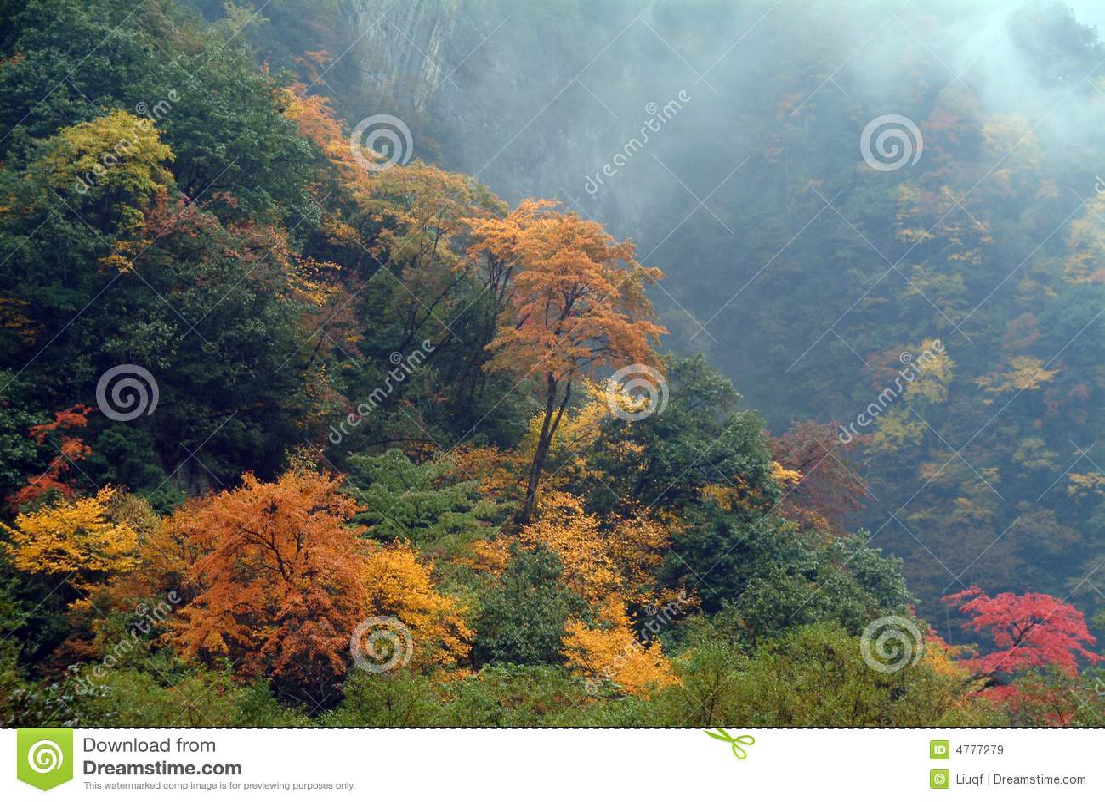 όλα τα φύλλα λόφων πέρα από το