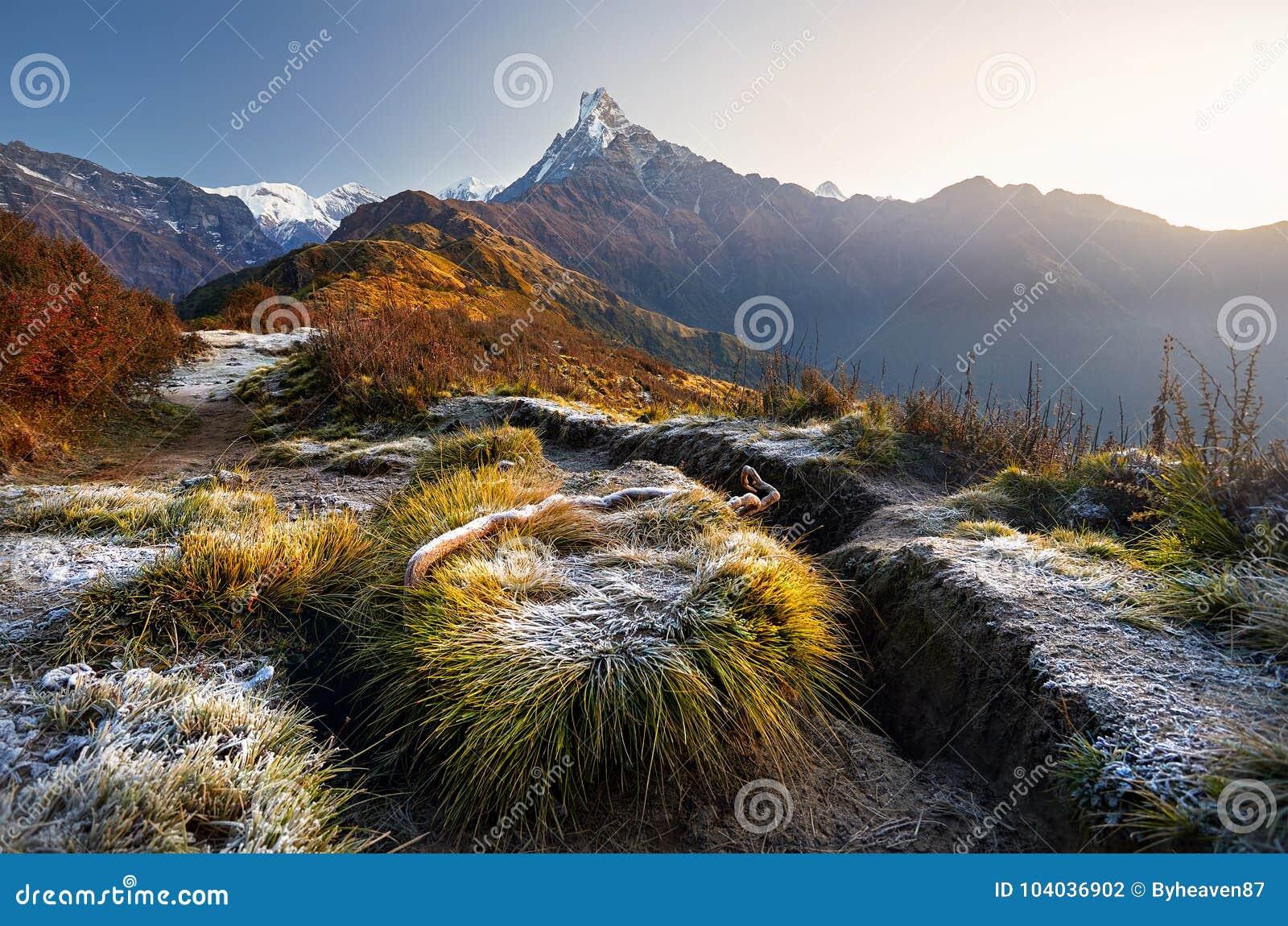 Όμορφα βουνά Himalayan
