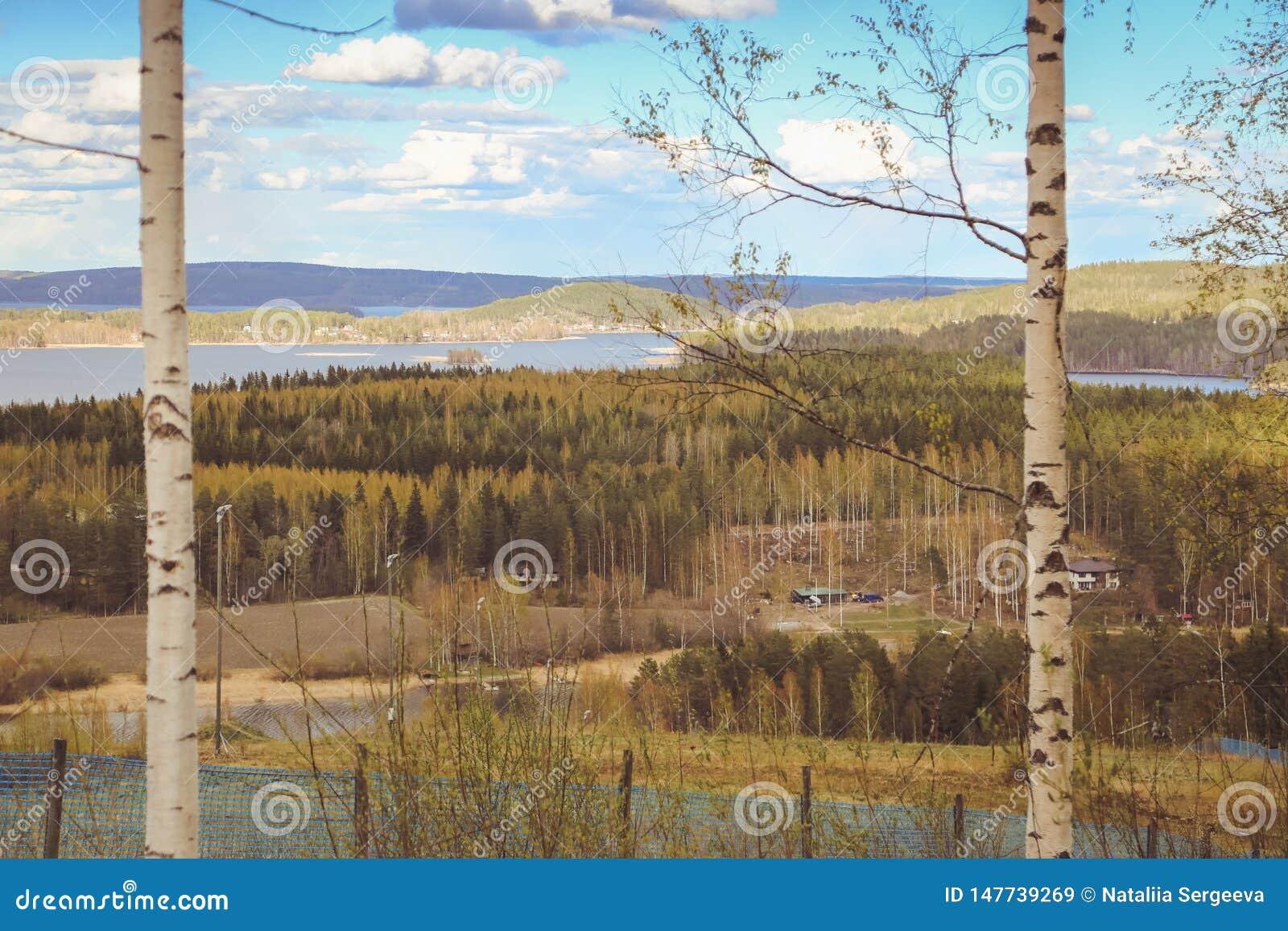 Όμορφες απόψεις των βουνών στις λίμνες, τα σπίτια, τις σημύδες και το δασικό φινλανδικό τοπίο Λίμνες και κοιλάδα Καρελία