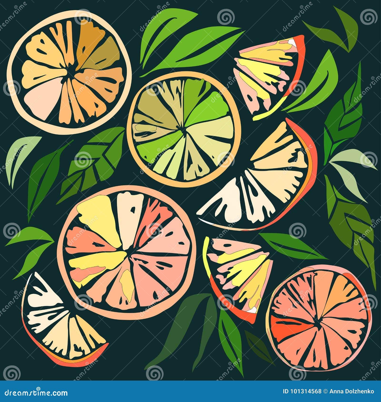 Όμορφες φωτεινές ζωηρόχρωμες εύγευστες νόστιμες yummy ώριμες juicy καλές πορτοκαλιές φέτες επιδορπίων θερινού φθινοπώρου του ελαφ