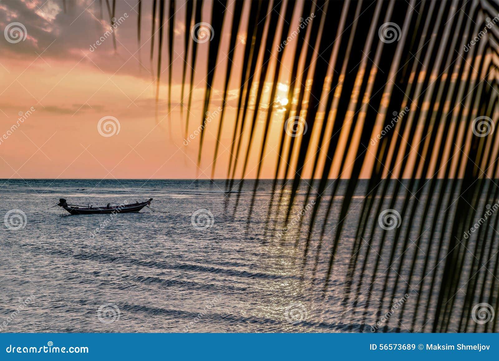 Download Όμορφη άποψη του ηλιοβασιλέματος στην παραλία Φοίνικας και βάρκες σε ένα φως του ήλιου Στοκ Εικόνα - εικόνα από κλίμα, ασιατικός: 56573689