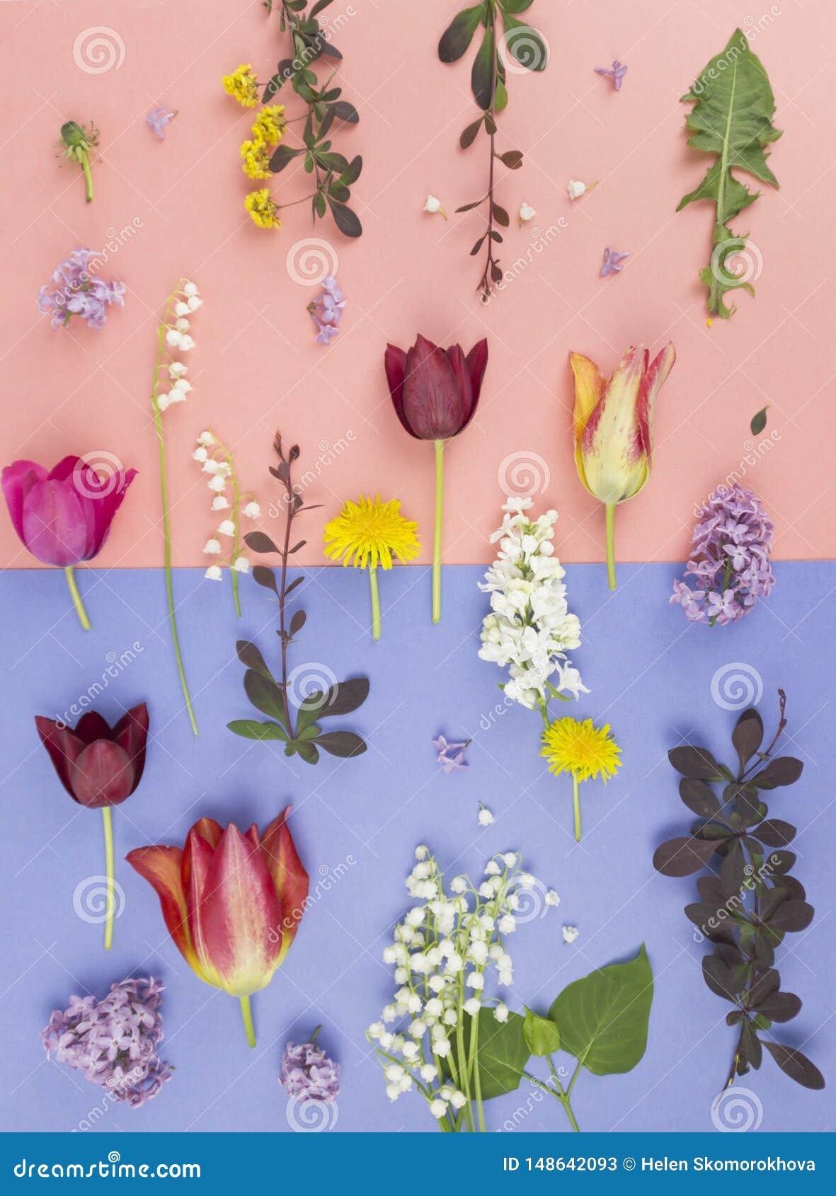 Όμορφη ανθοδέσμη των λουλουδιών στο βάζο που απομονώνεται
