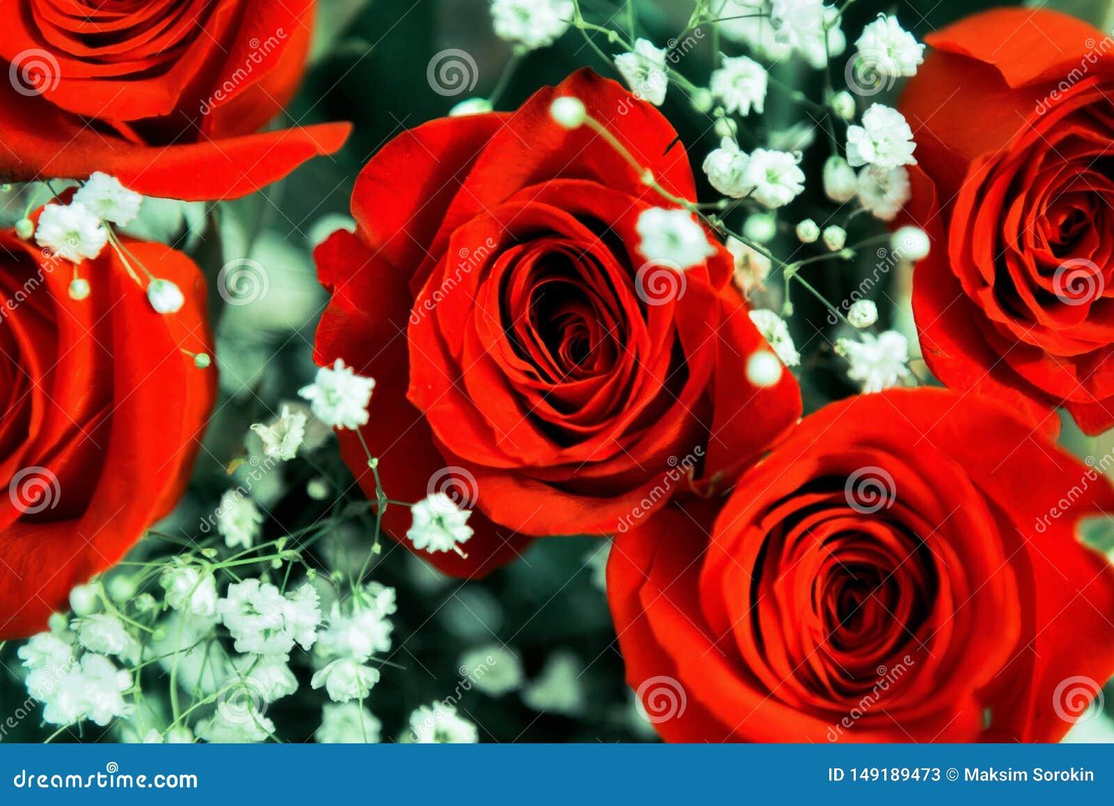 Όμορφη εορταστική ανθοδέσμη των φωτεινών κόκκινων τριαντάφυλλων
