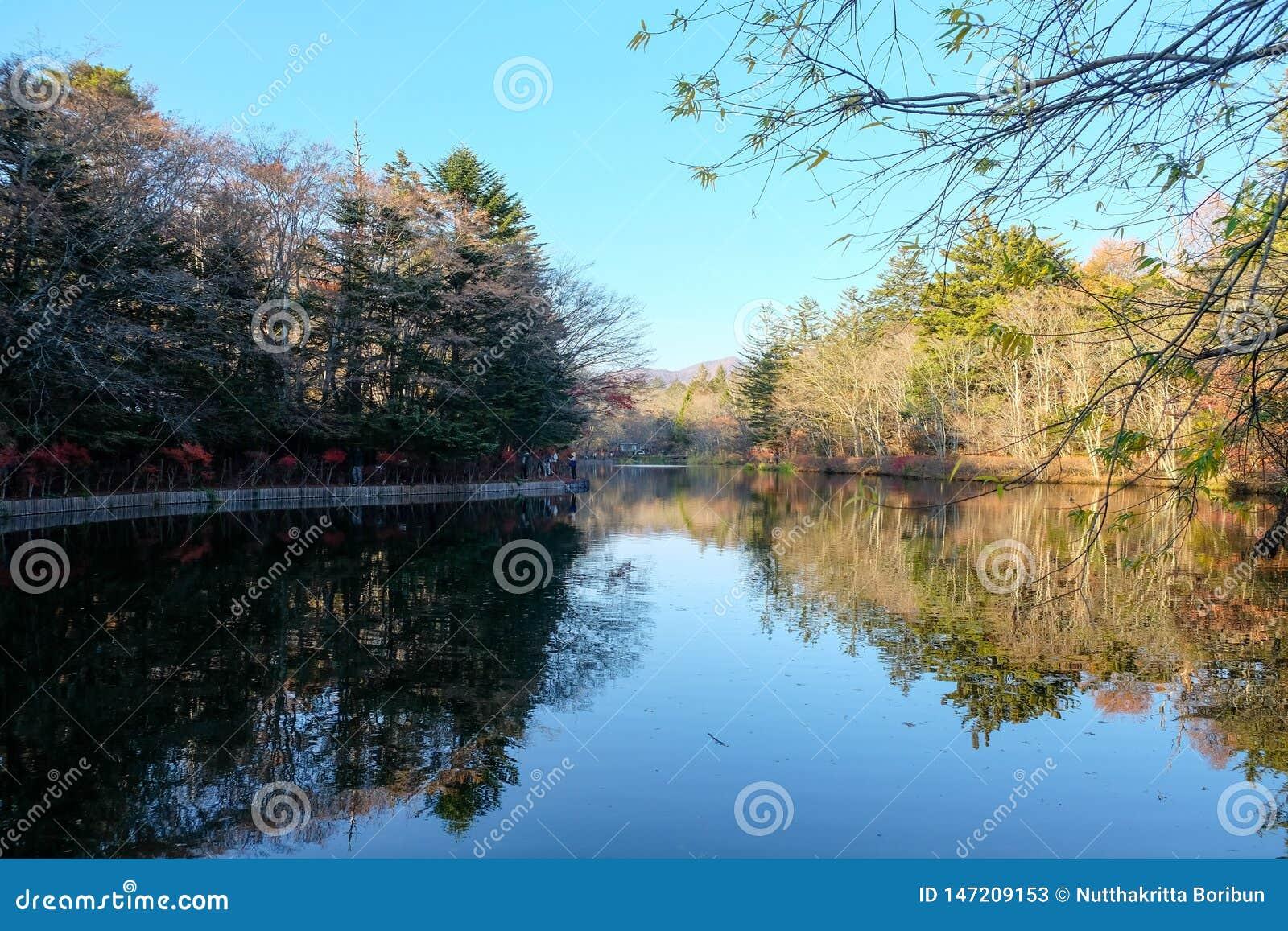 Όμορφη λίμνη Kumoba