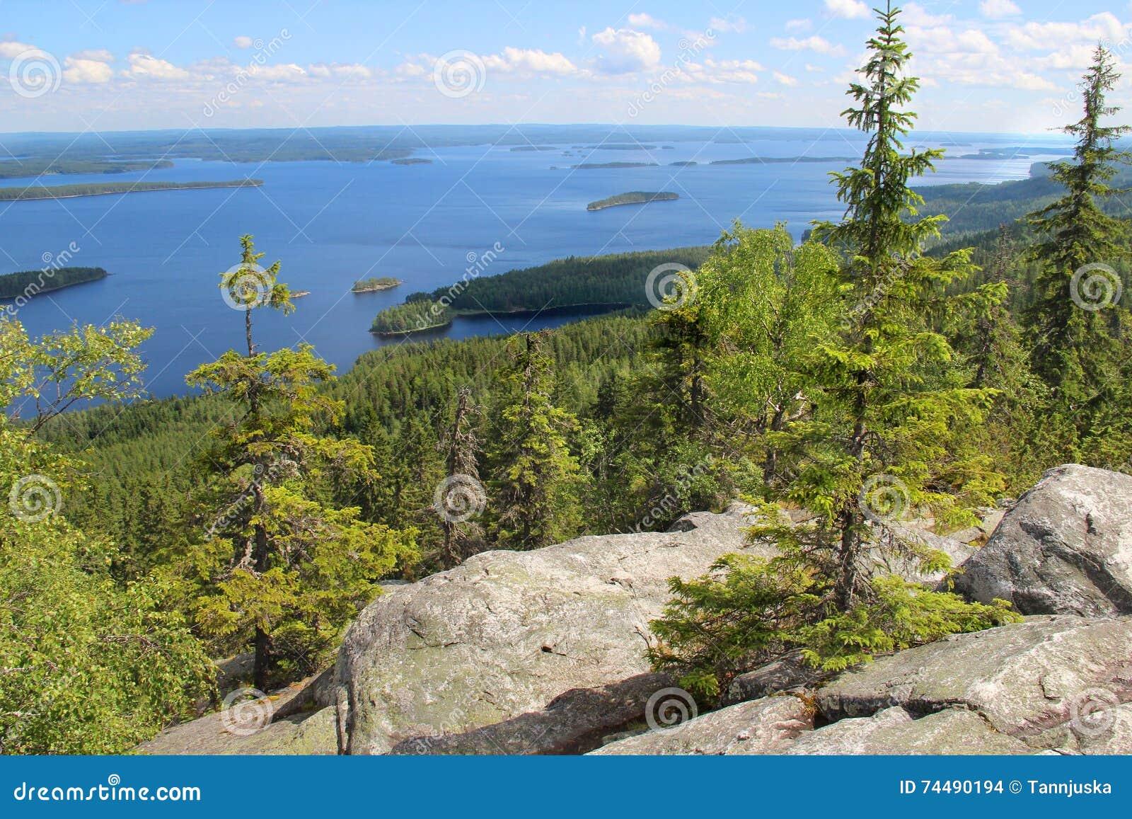 Όμορφη φύση της Φινλανδίας, Koli