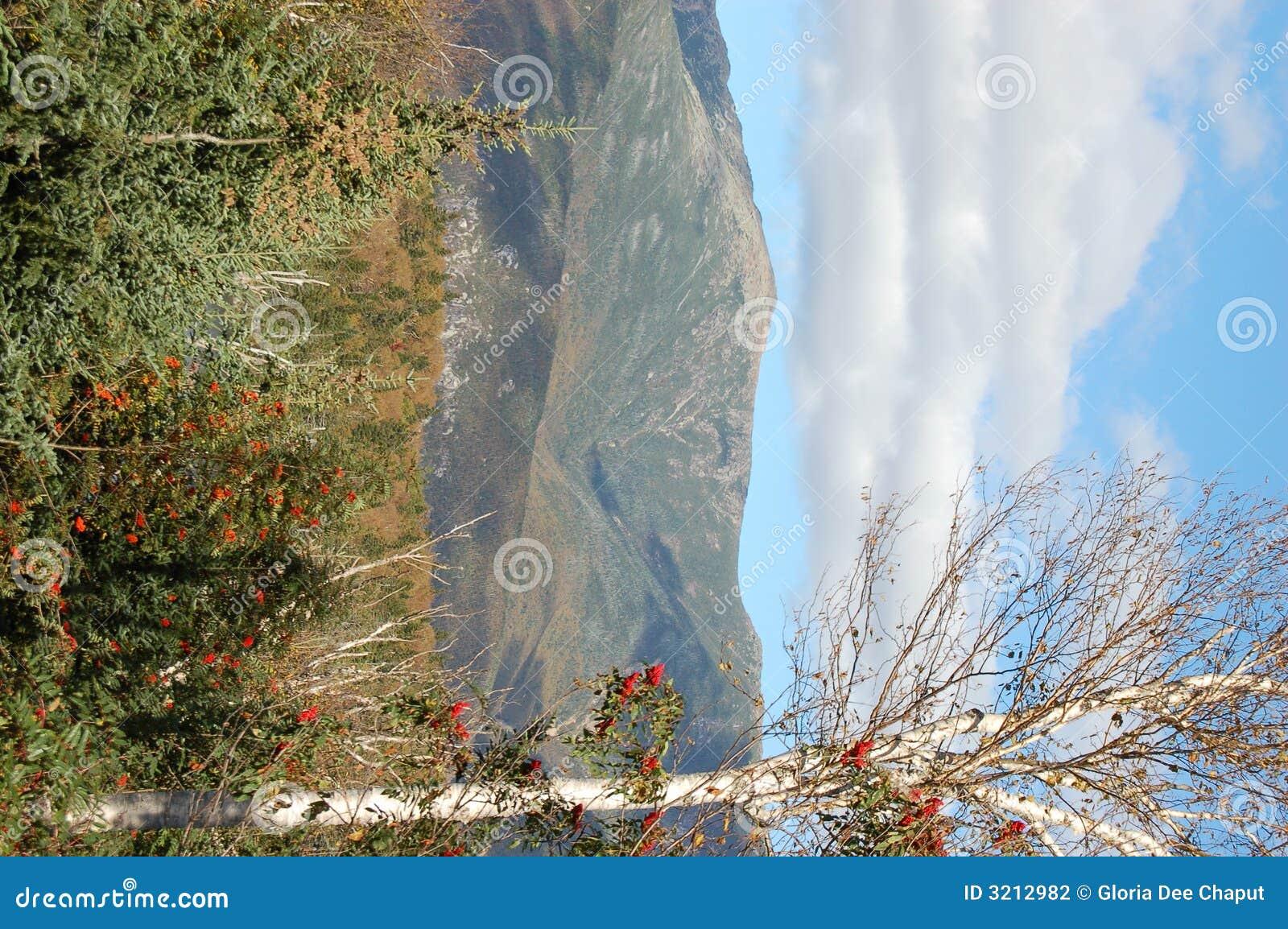 όμορφη όψη φθινοπώρου